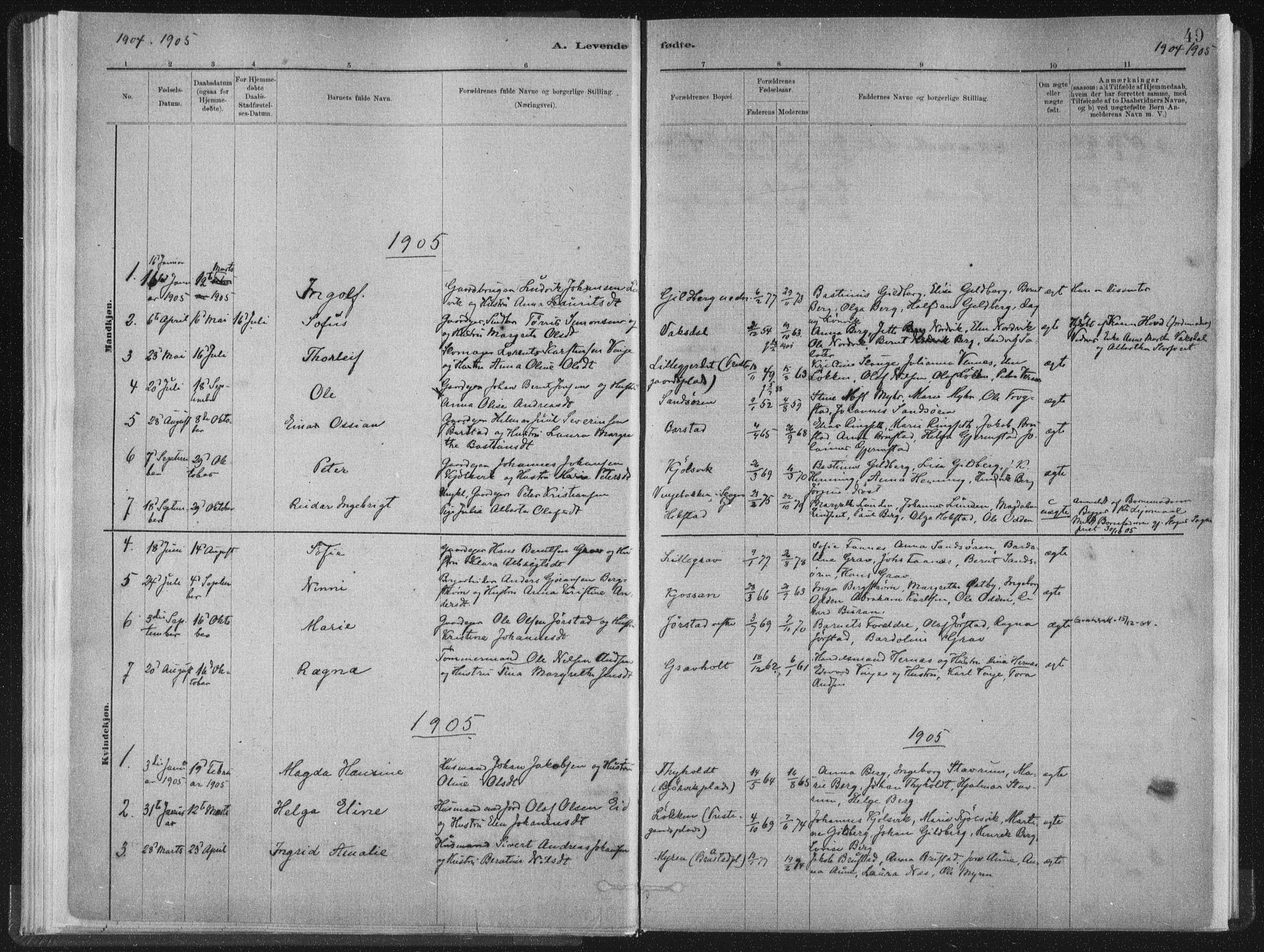SAT, Ministerialprotokoller, klokkerbøker og fødselsregistre - Nord-Trøndelag, 722/L0220: Ministerialbok nr. 722A07, 1881-1908, s. 49