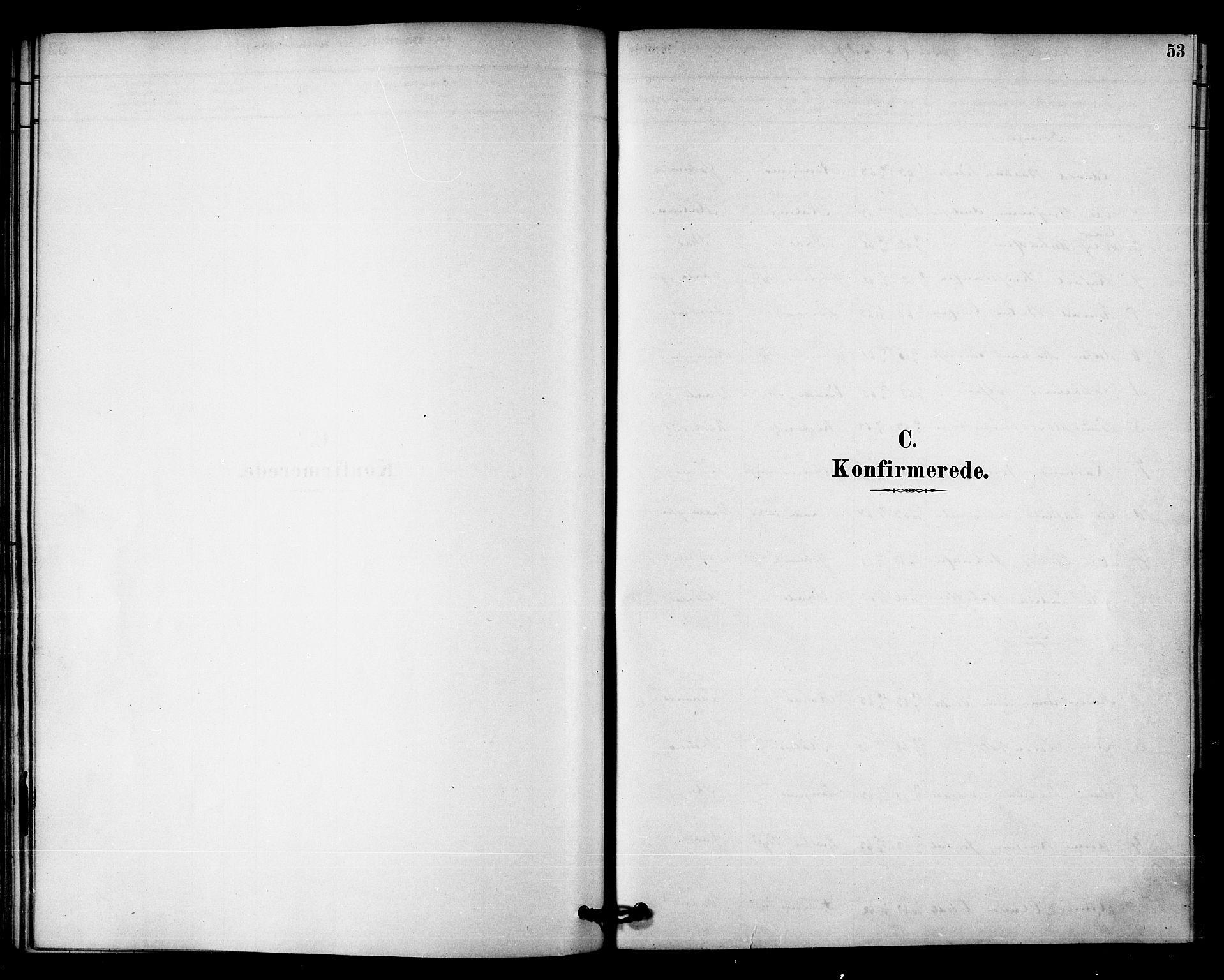 SAT, Ministerialprotokoller, klokkerbøker og fødselsregistre - Nord-Trøndelag, 745/L0429: Ministerialbok nr. 745A01, 1878-1894, s. 53
