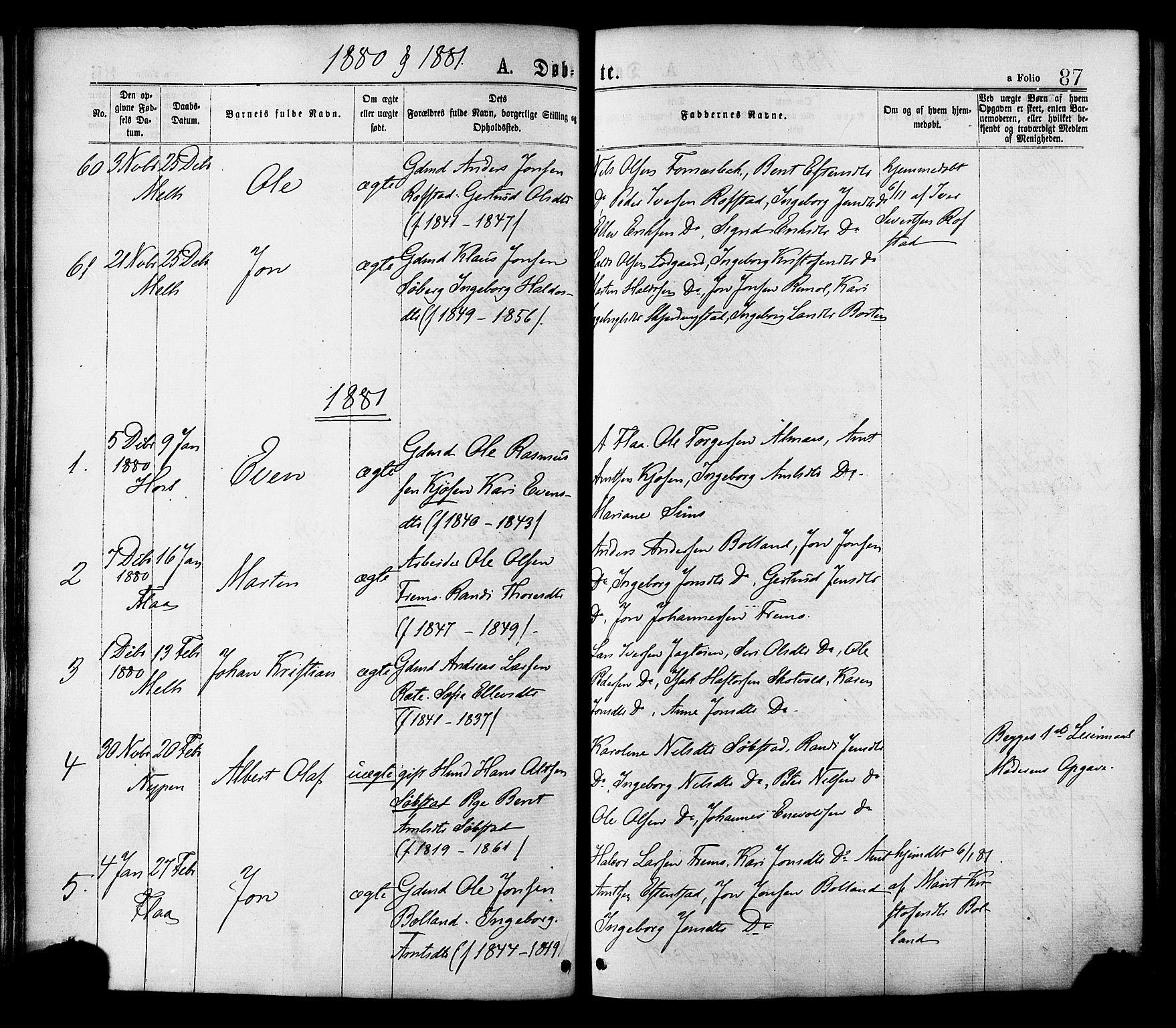 SAT, Ministerialprotokoller, klokkerbøker og fødselsregistre - Sør-Trøndelag, 691/L1079: Ministerialbok nr. 691A11, 1873-1886, s. 87