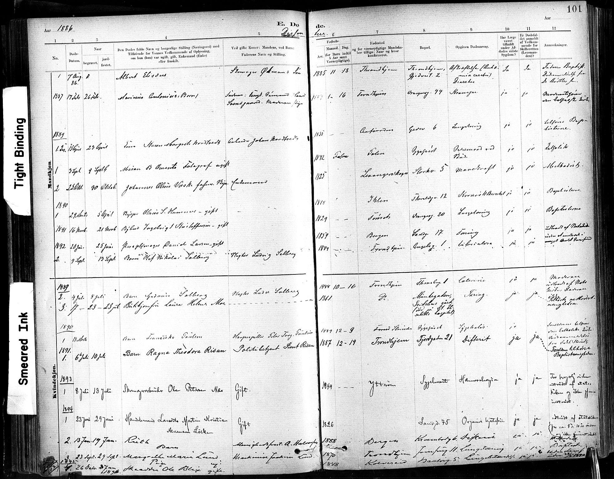 SAT, Ministerialprotokoller, klokkerbøker og fødselsregistre - Sør-Trøndelag, 602/L0120: Ministerialbok nr. 602A18, 1880-1913, s. 101