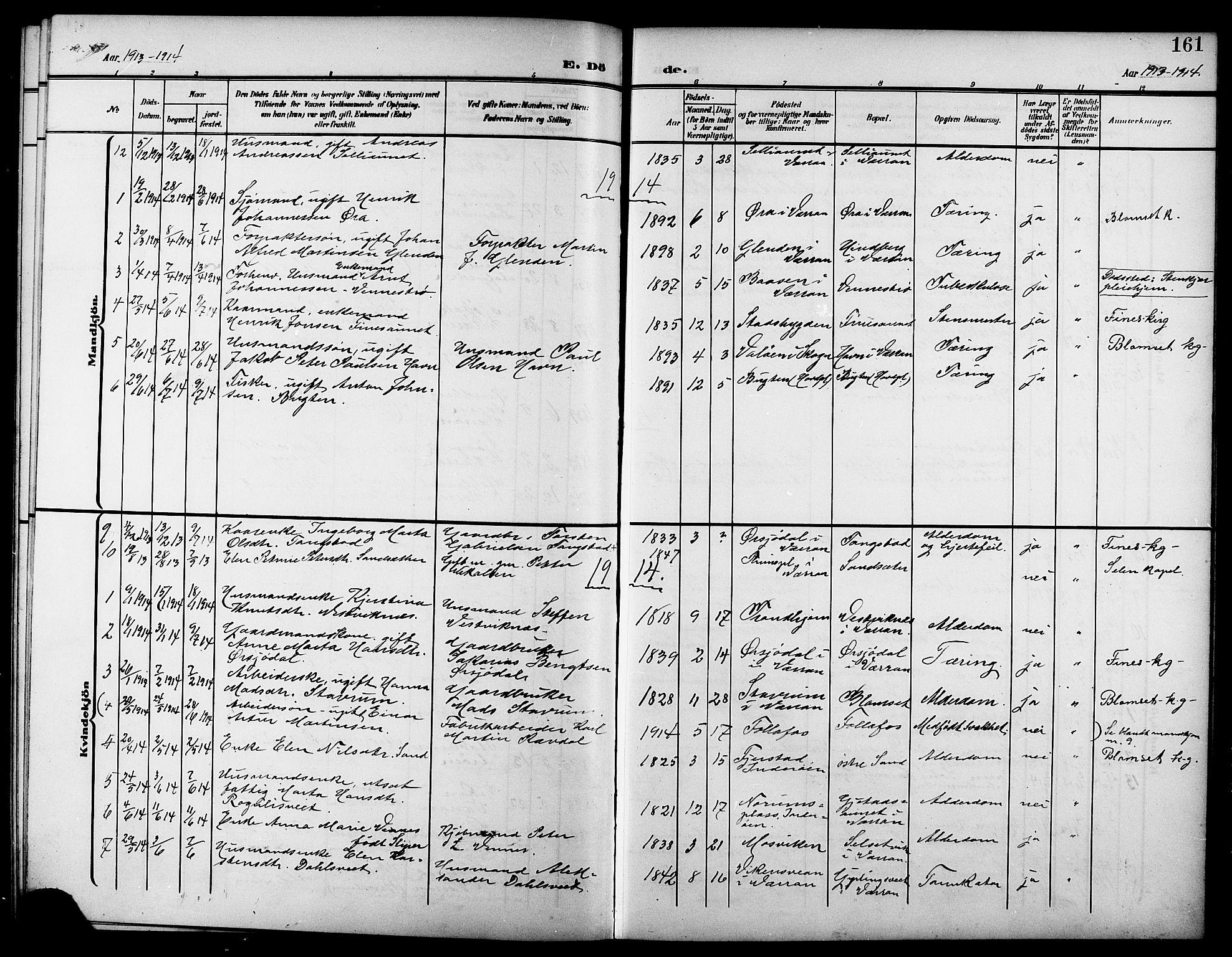 SAT, Ministerialprotokoller, klokkerbøker og fødselsregistre - Nord-Trøndelag, 744/L0424: Klokkerbok nr. 744C03, 1906-1923, s. 161