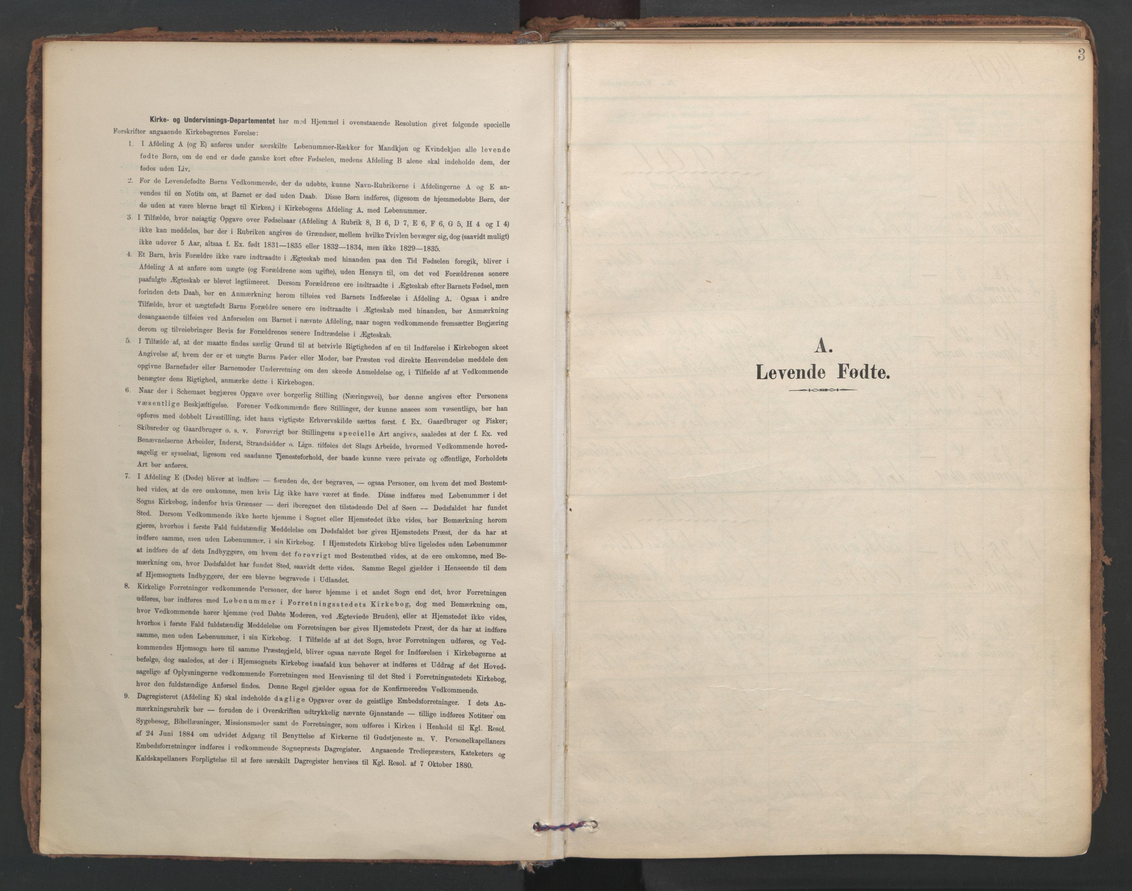 SAT, Ministerialprotokoller, klokkerbøker og fødselsregistre - Nord-Trøndelag, 741/L0397: Ministerialbok nr. 741A11, 1901-1911, s. 3