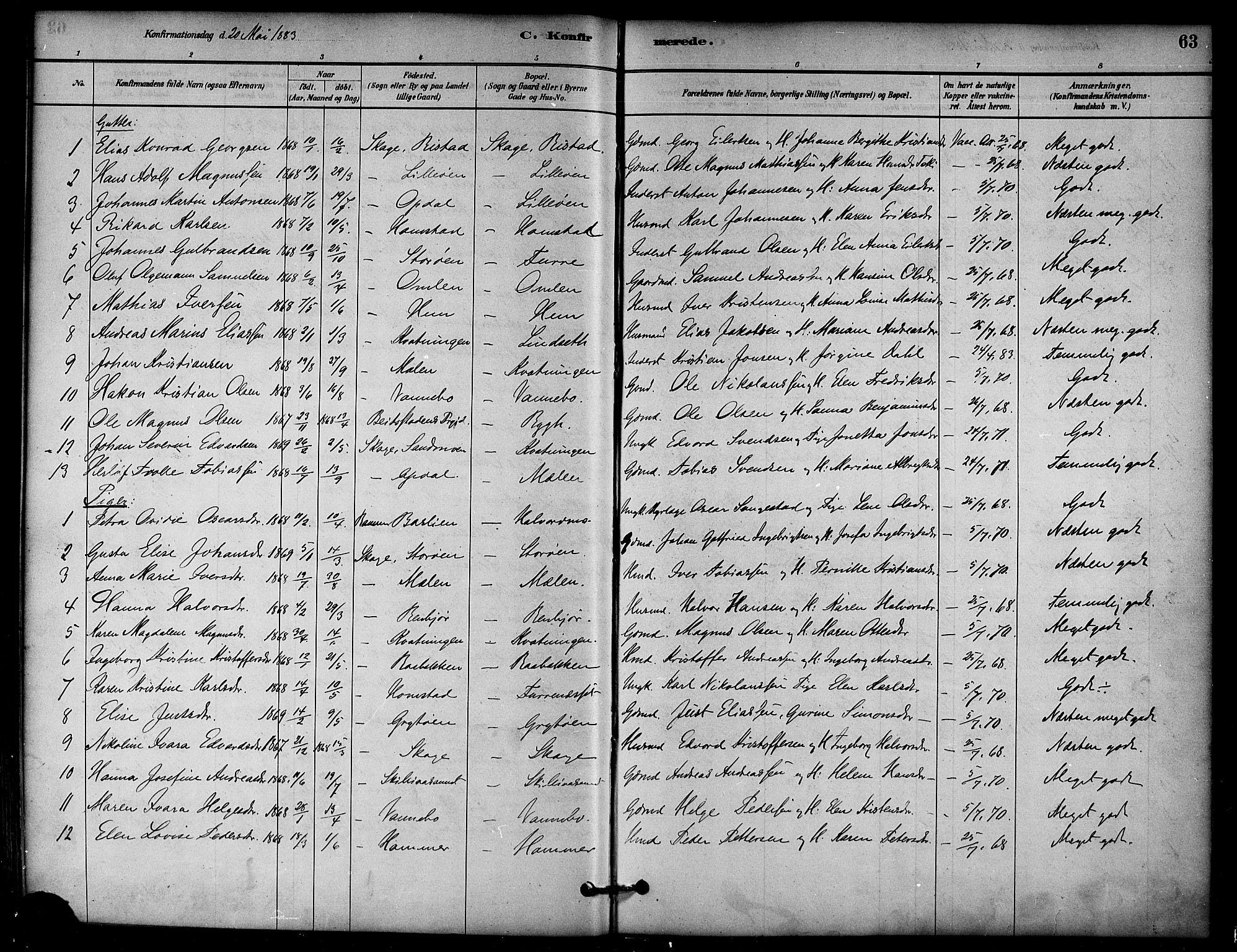 SAT, Ministerialprotokoller, klokkerbøker og fødselsregistre - Nord-Trøndelag, 766/L0563: Ministerialbok nr. 767A01, 1881-1899, s. 63