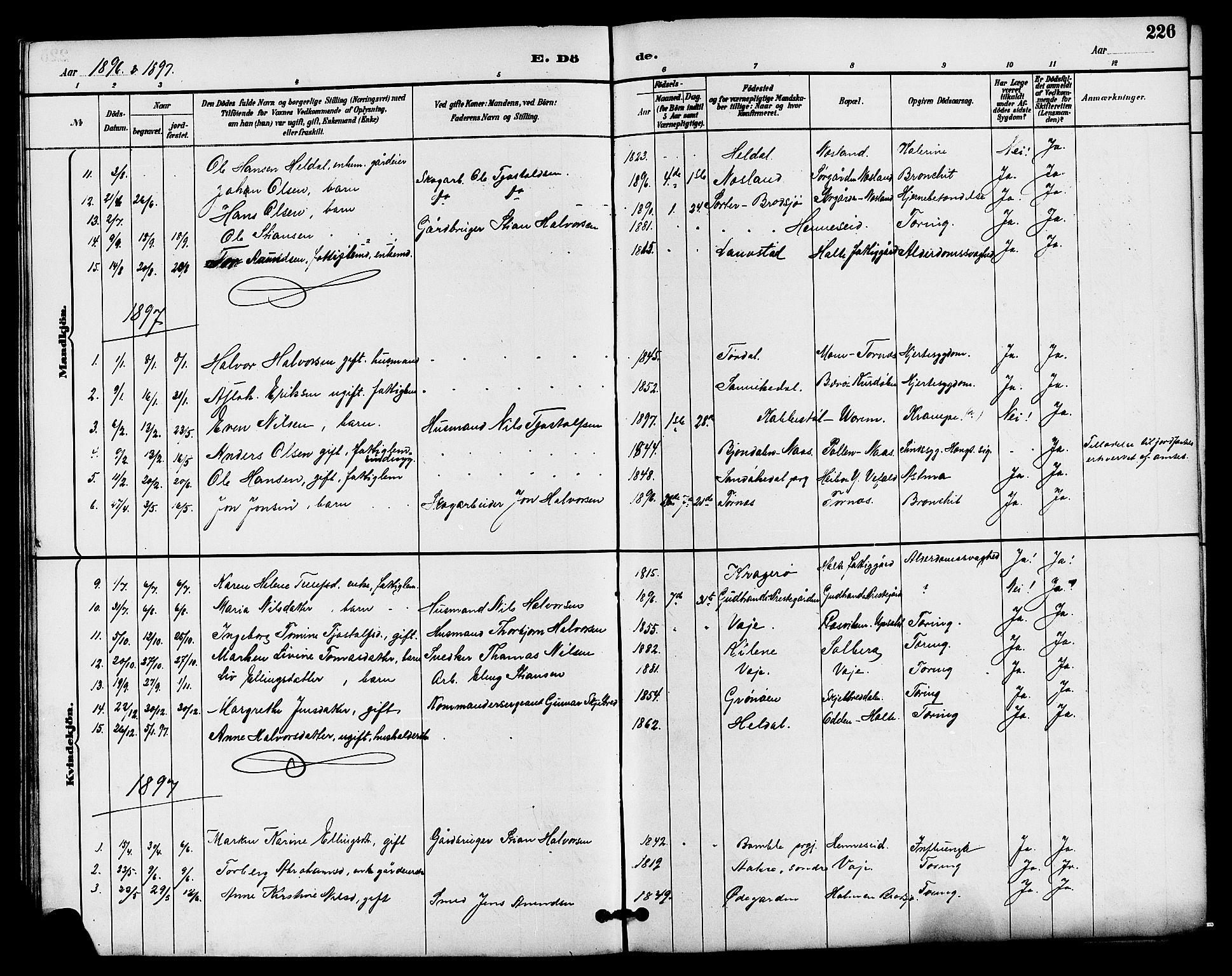 SAKO, Drangedal kirkebøker, G/Ga/L0003: Klokkerbok nr. I 3, 1887-1906, s. 226