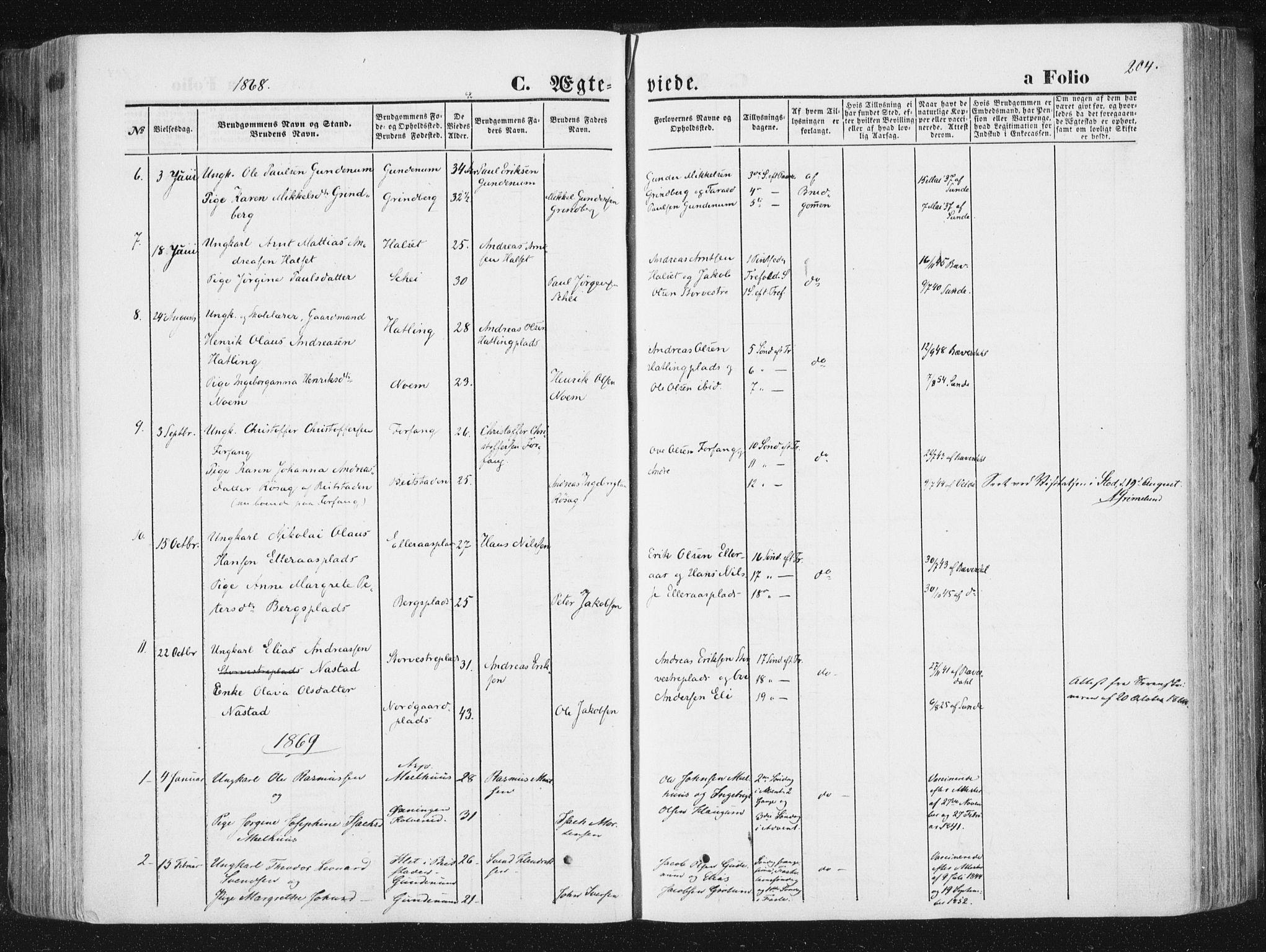 SAT, Ministerialprotokoller, klokkerbøker og fødselsregistre - Nord-Trøndelag, 746/L0447: Ministerialbok nr. 746A06, 1860-1877, s. 204