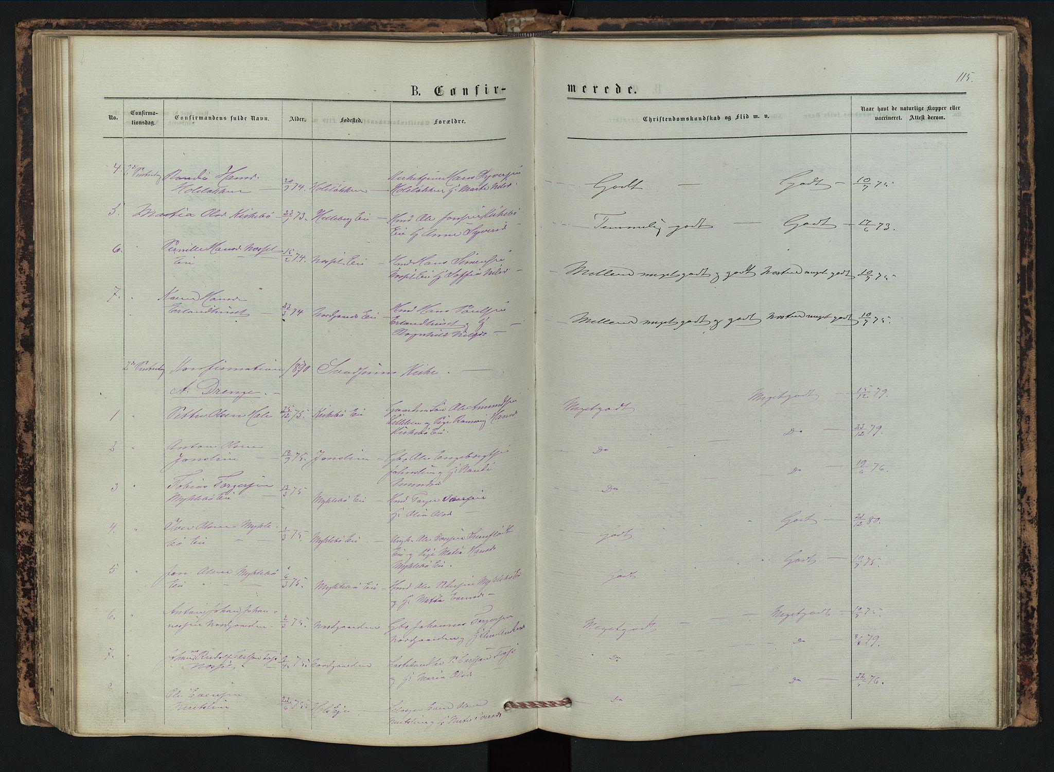 SAH, Vestre Gausdal prestekontor, Klokkerbok nr. 2, 1874-1897, s. 115