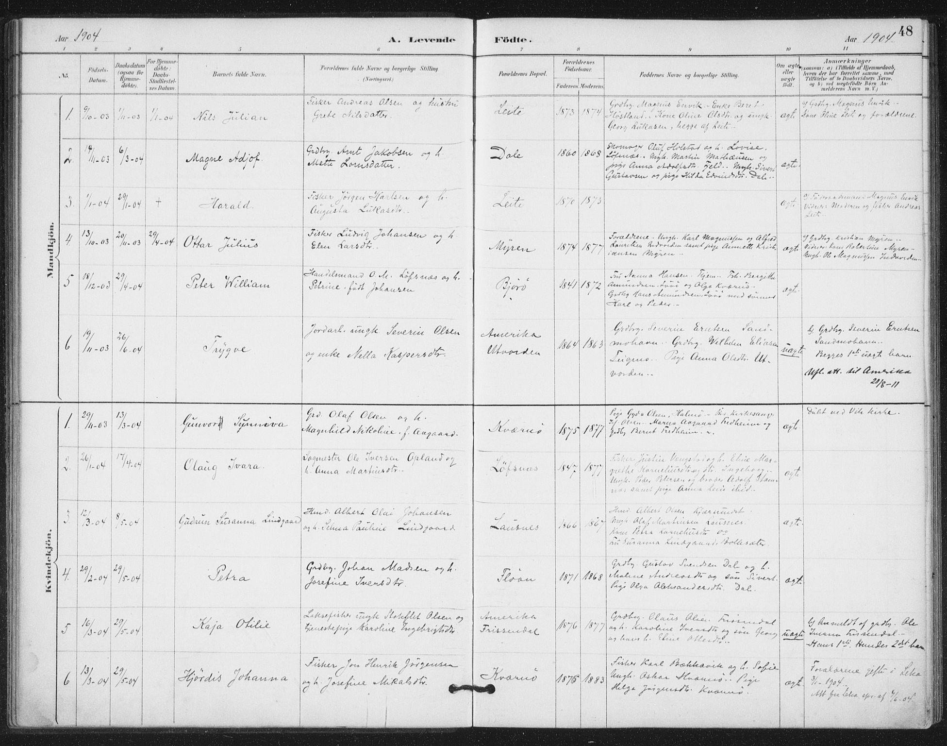 SAT, Ministerialprotokoller, klokkerbøker og fødselsregistre - Nord-Trøndelag, 772/L0603: Ministerialbok nr. 772A01, 1885-1912, s. 48
