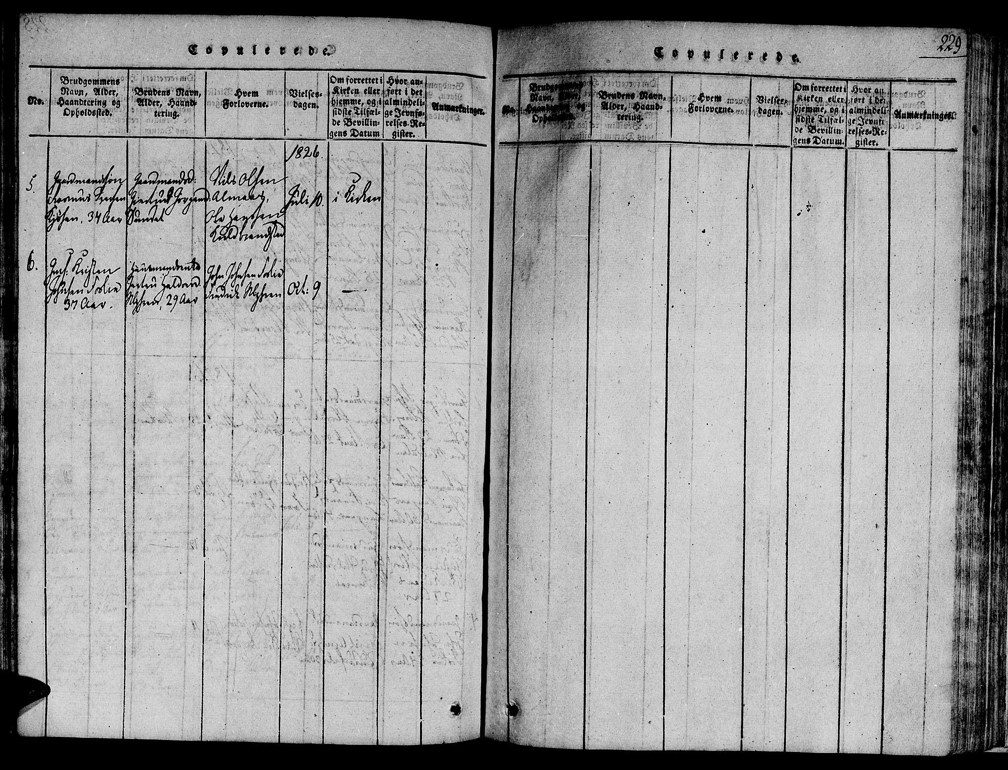 SAT, Ministerialprotokoller, klokkerbøker og fødselsregistre - Sør-Trøndelag, 691/L1068: Ministerialbok nr. 691A03 /4, 1816-1826, s. 229