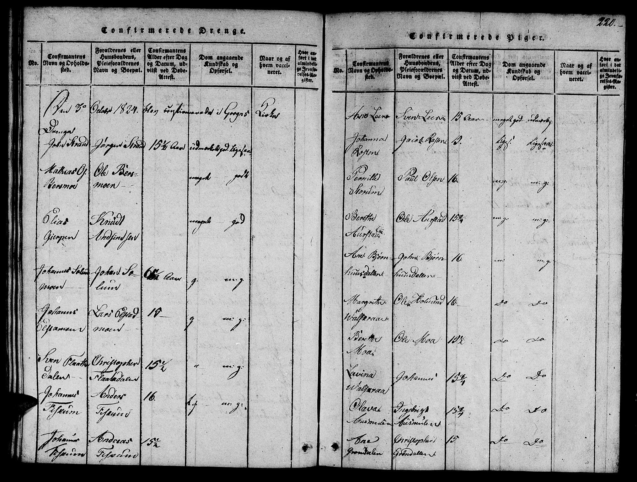 SAT, Ministerialprotokoller, klokkerbøker og fødselsregistre - Nord-Trøndelag, 758/L0521: Klokkerbok nr. 758C01, 1816-1825, s. 220