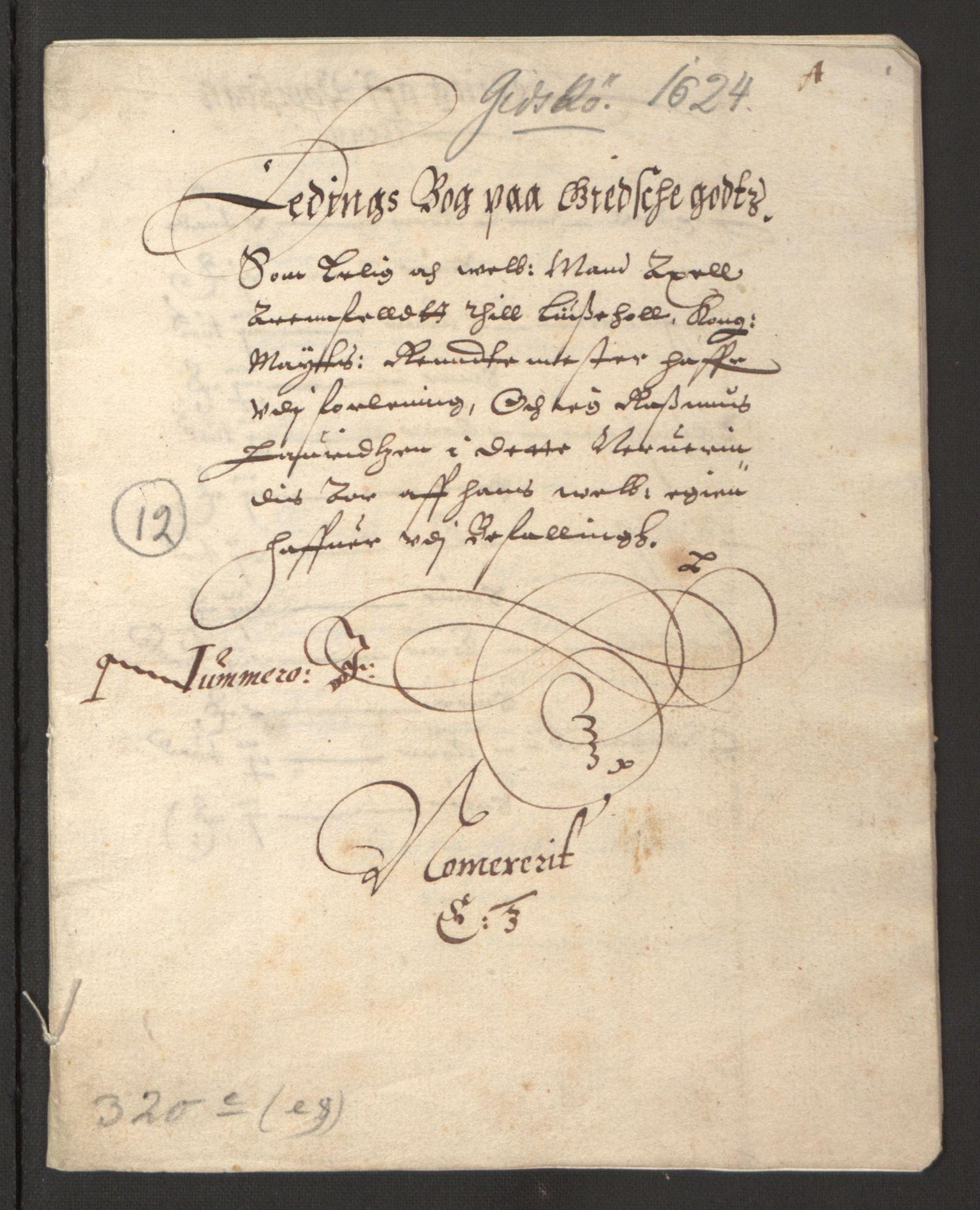 RA, Stattholderembetet 1572-1771, Ek/L0003: Jordebøker til utlikning av garnisonsskatt 1624-1626:, 1624-1625, s. 339