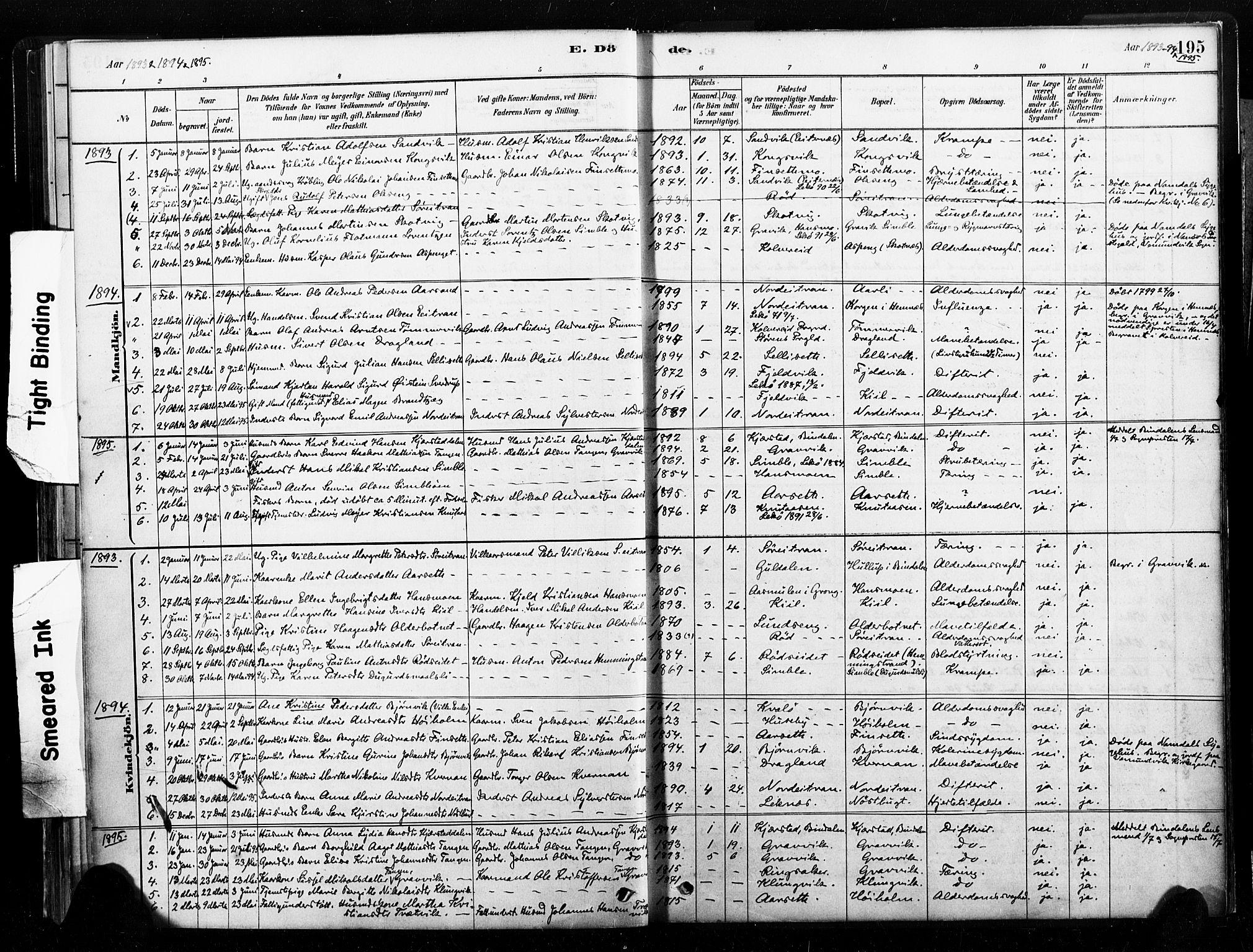 SAT, Ministerialprotokoller, klokkerbøker og fødselsregistre - Nord-Trøndelag, 789/L0705: Ministerialbok nr. 789A01, 1878-1910, s. 195