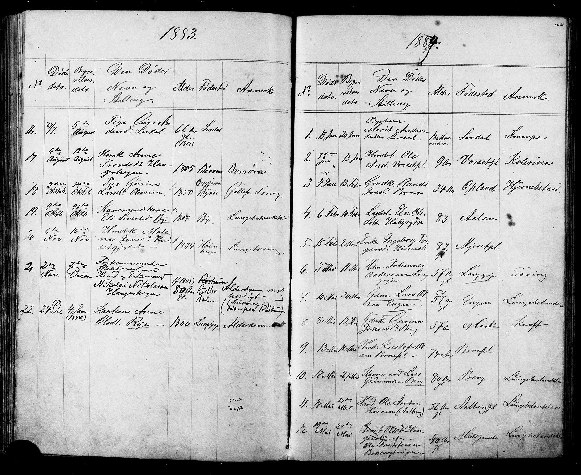 SAT, Ministerialprotokoller, klokkerbøker og fødselsregistre - Sør-Trøndelag, 612/L0387: Klokkerbok nr. 612C03, 1874-1908, s. 221