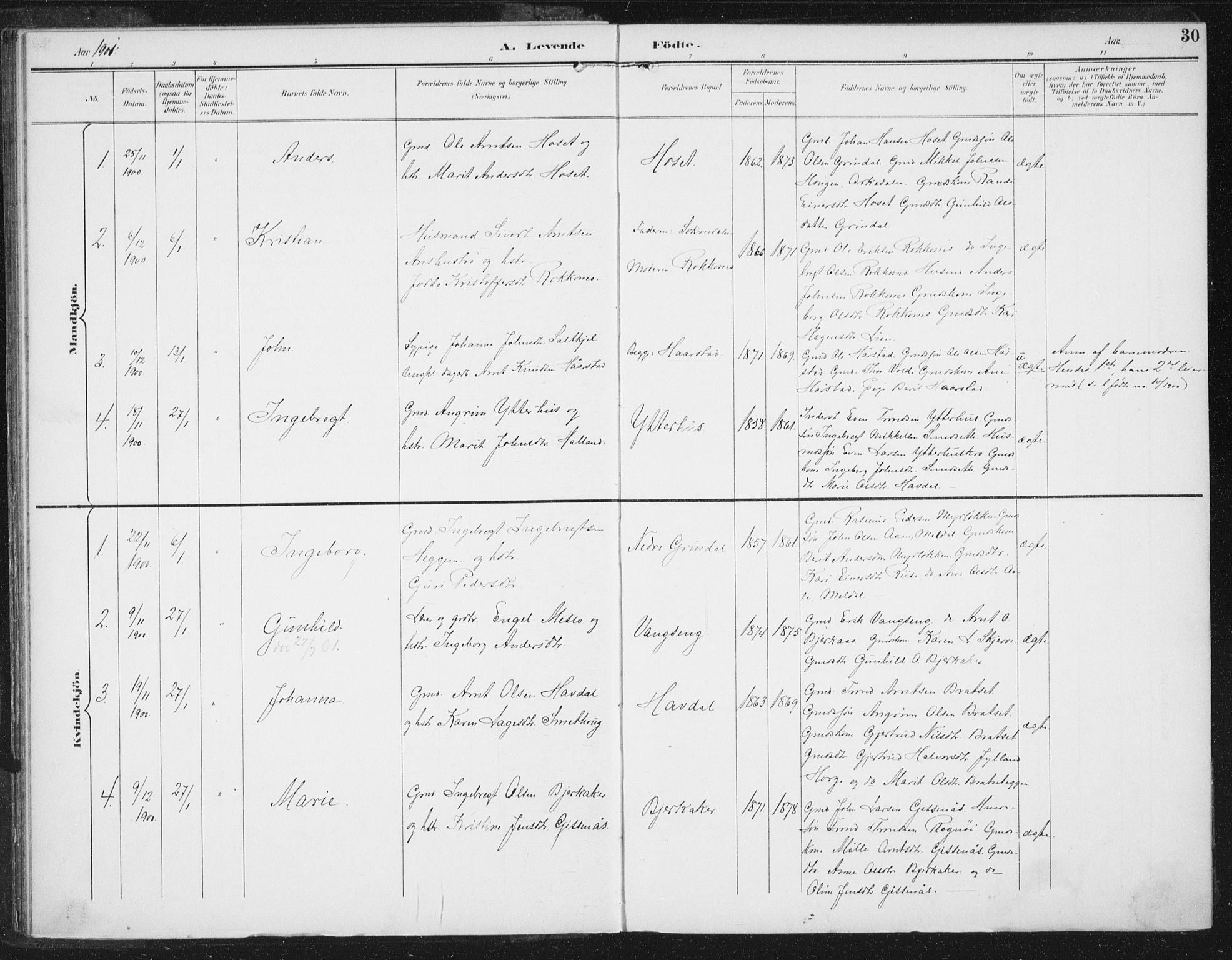 SAT, Ministerialprotokoller, klokkerbøker og fødselsregistre - Sør-Trøndelag, 674/L0872: Ministerialbok nr. 674A04, 1897-1907, s. 30