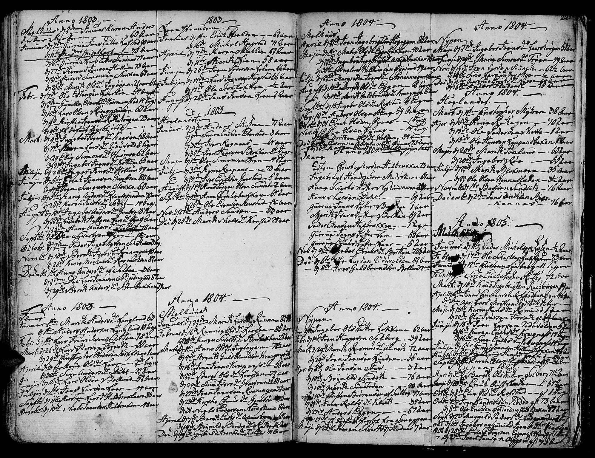 SAT, Ministerialprotokoller, klokkerbøker og fødselsregistre - Sør-Trøndelag, 691/L1061: Ministerialbok nr. 691A02 /1, 1768-1815, s. 221