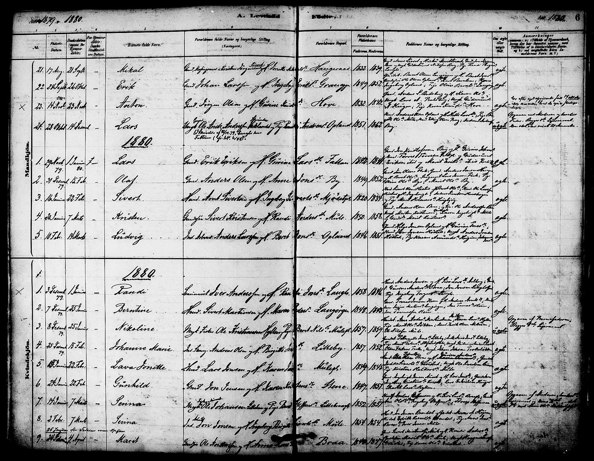 SAT, Ministerialprotokoller, klokkerbøker og fødselsregistre - Sør-Trøndelag, 612/L0378: Ministerialbok nr. 612A10, 1878-1897, s. 6