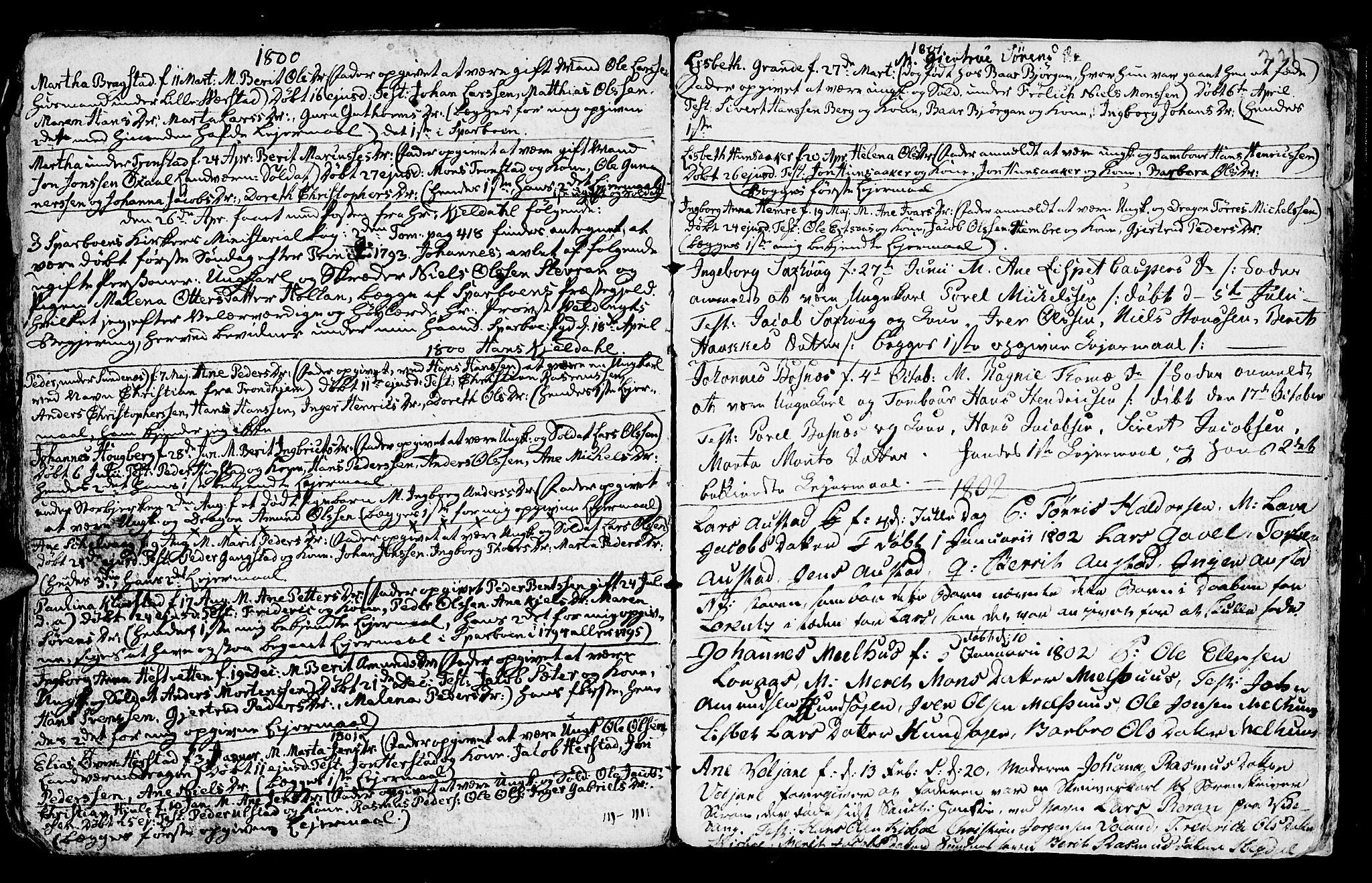 SAT, Ministerialprotokoller, klokkerbøker og fødselsregistre - Nord-Trøndelag, 730/L0273: Ministerialbok nr. 730A02, 1762-1802, s. 221