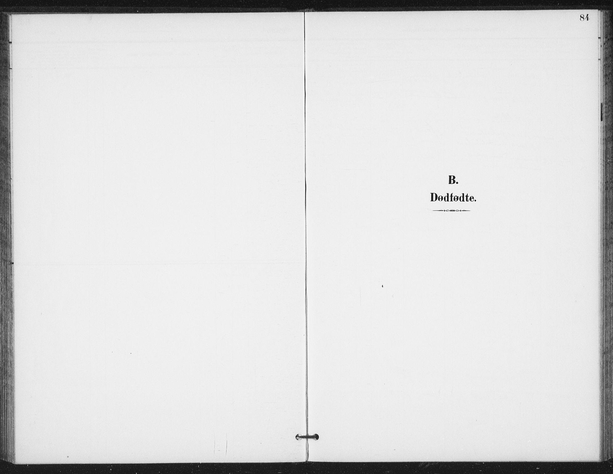 SAT, Ministerialprotokoller, klokkerbøker og fødselsregistre - Nord-Trøndelag, 714/L0131: Ministerialbok nr. 714A02, 1896-1918, s. 84