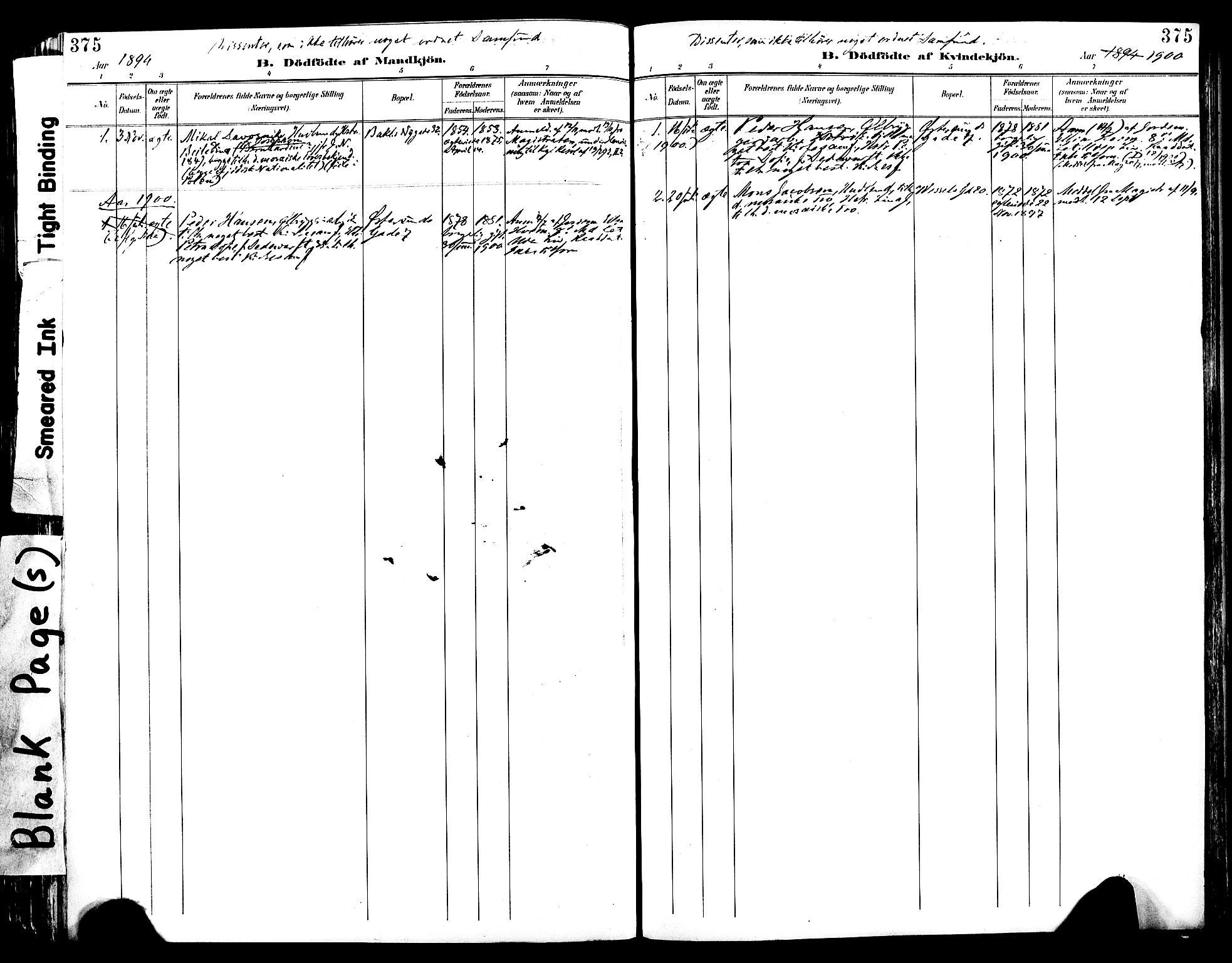 SAT, Ministerialprotokoller, klokkerbøker og fødselsregistre - Sør-Trøndelag, 604/L0197: Ministerialbok nr. 604A18, 1893-1900, s. 375