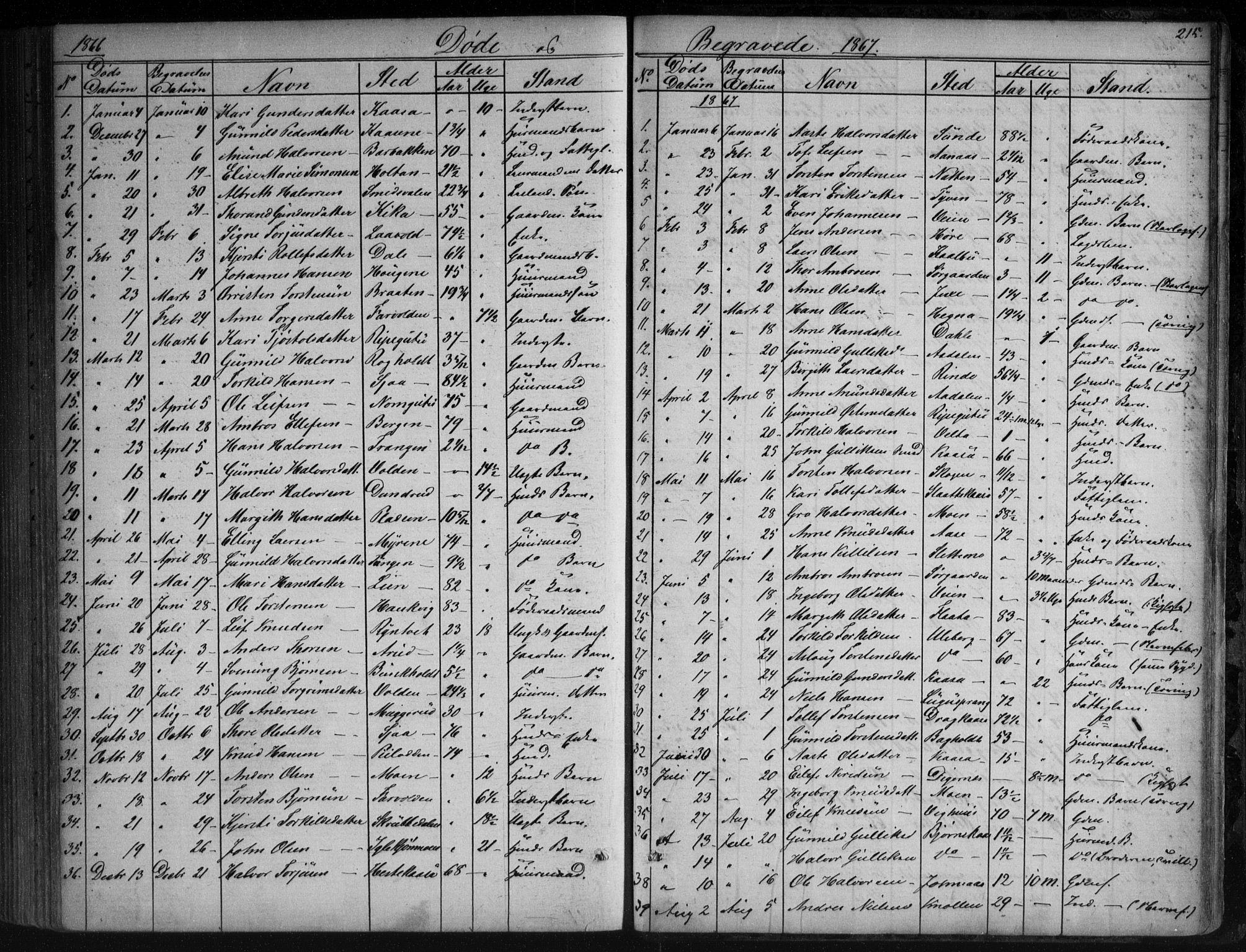 SAKO, Sauherad kirkebøker, G/Ga/L0003: Klokkerbok nr. I 3, 1866-1905, s. 215