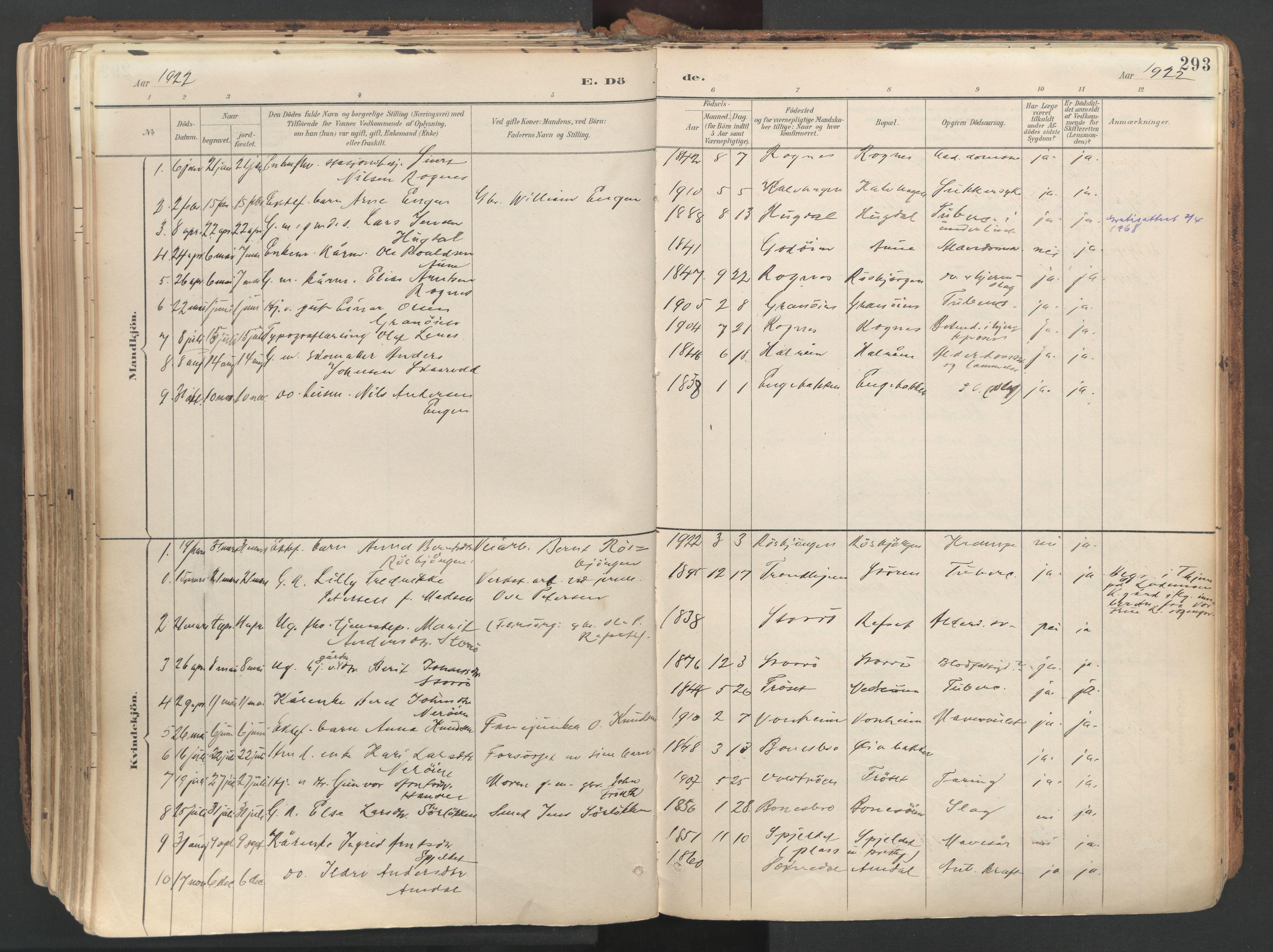 SAT, Ministerialprotokoller, klokkerbøker og fødselsregistre - Sør-Trøndelag, 687/L1004: Ministerialbok nr. 687A10, 1891-1923, s. 293