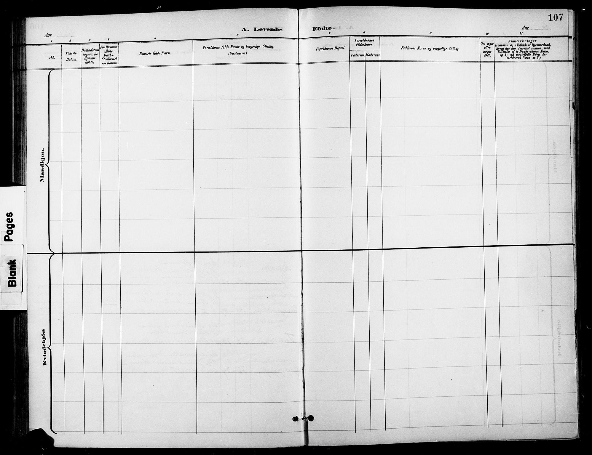 SAH, Gran prestekontor, Ministerialbok nr. 19, 1898-1907, s. 107