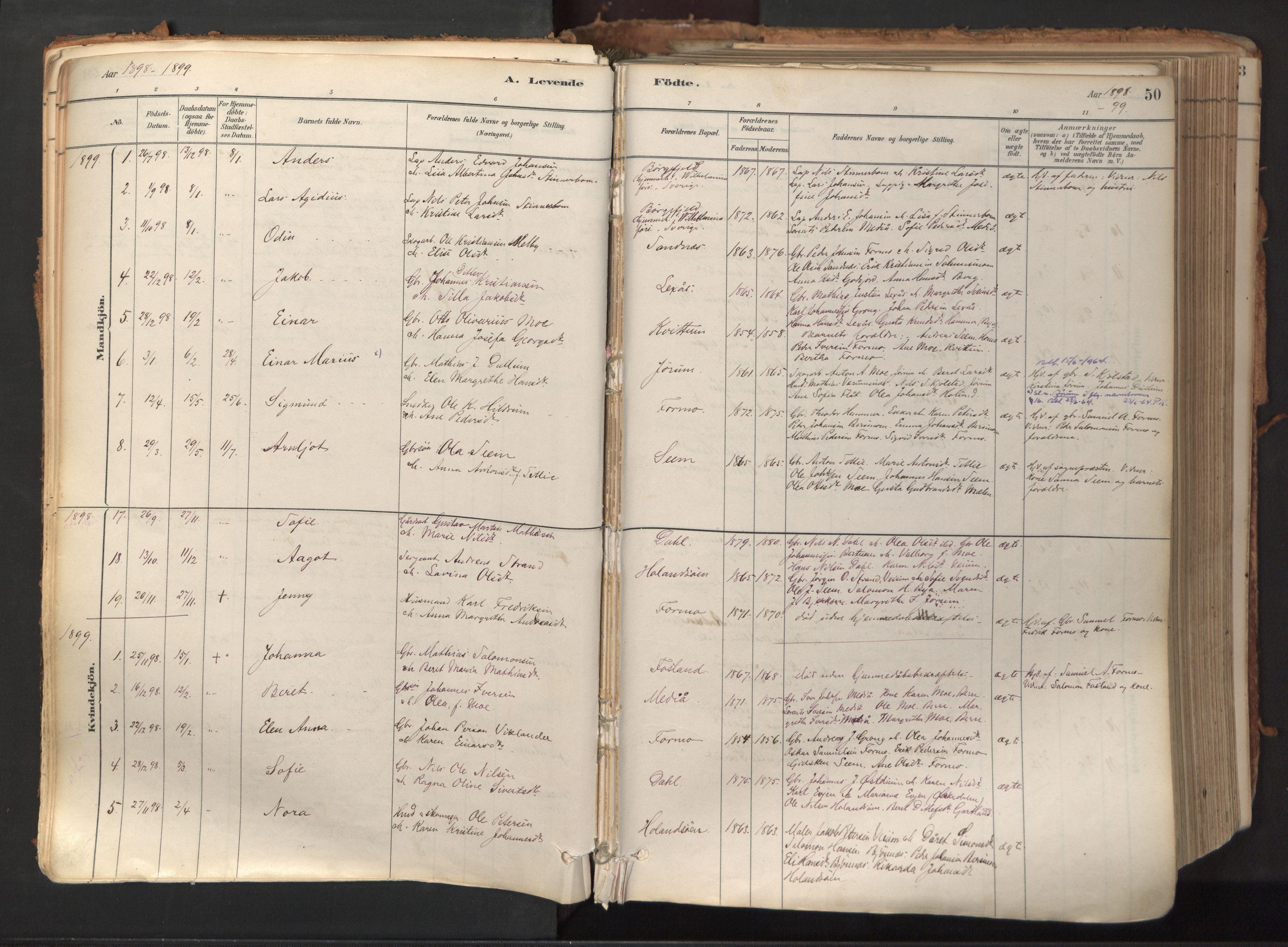SAT, Ministerialprotokoller, klokkerbøker og fødselsregistre - Nord-Trøndelag, 758/L0519: Ministerialbok nr. 758A04, 1880-1926, s. 50