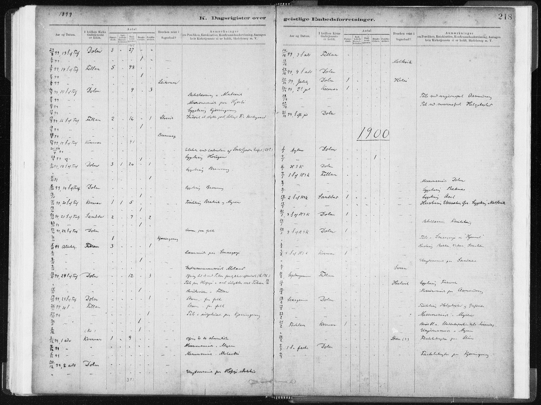 SAT, Ministerialprotokoller, klokkerbøker og fødselsregistre - Sør-Trøndelag, 634/L0533: Ministerialbok nr. 634A09, 1882-1901, s. 218