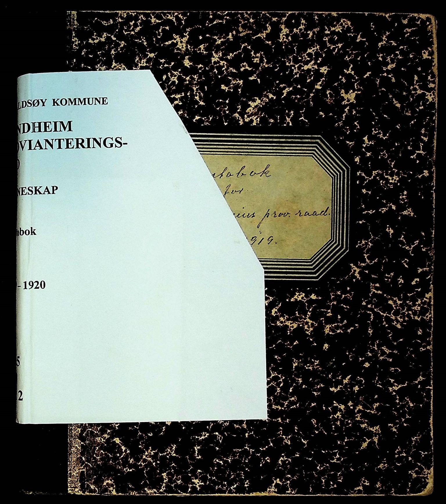 IKAH, Varaldsøy kommune. Mundheim provianteringsråd, R/Ra/L0002: Kontobok  for Mundheim provianteringsråd, 1919-1920, s. 1