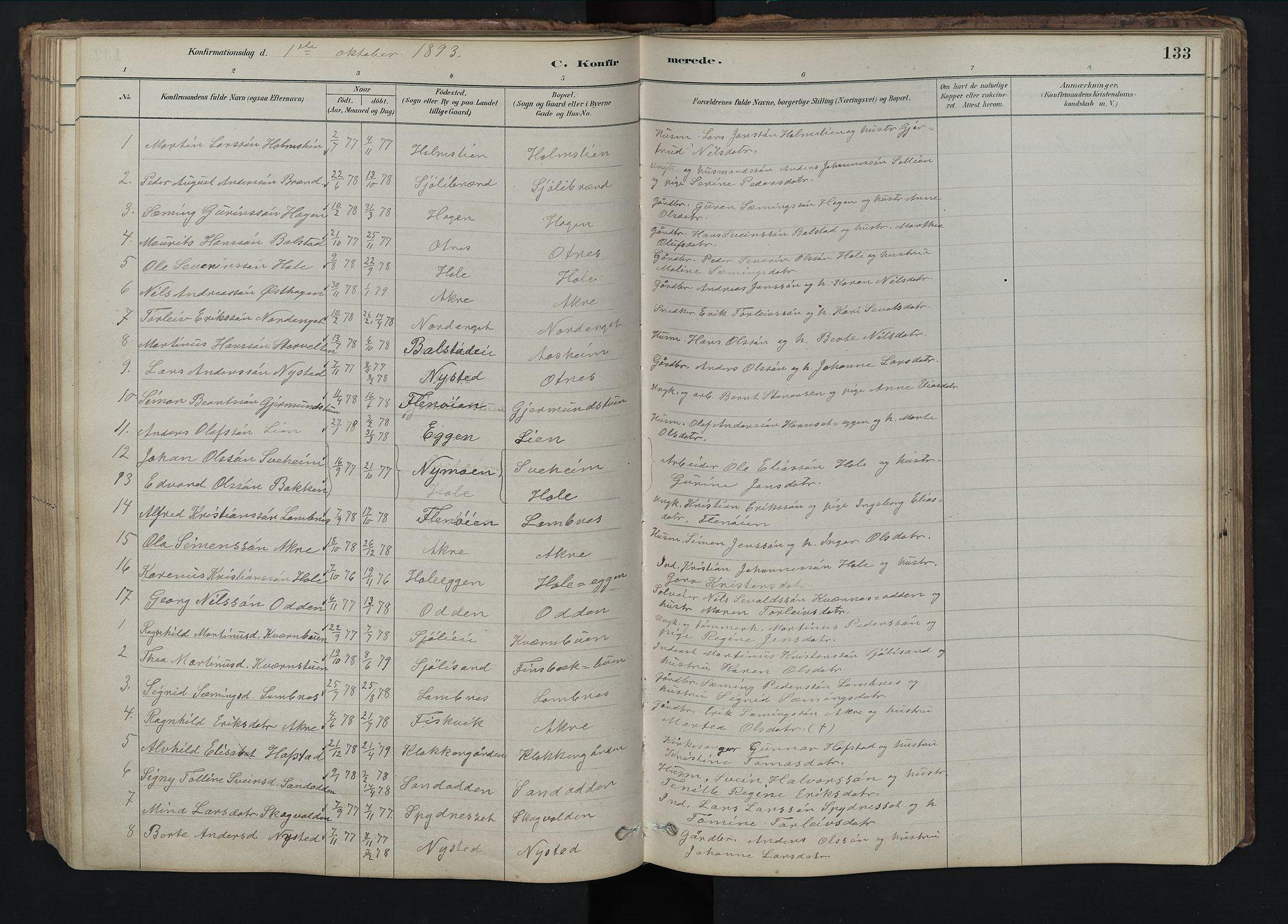 SAH, Rendalen prestekontor, H/Ha/Hab/L0009: Klokkerbok nr. 9, 1879-1902, s. 133