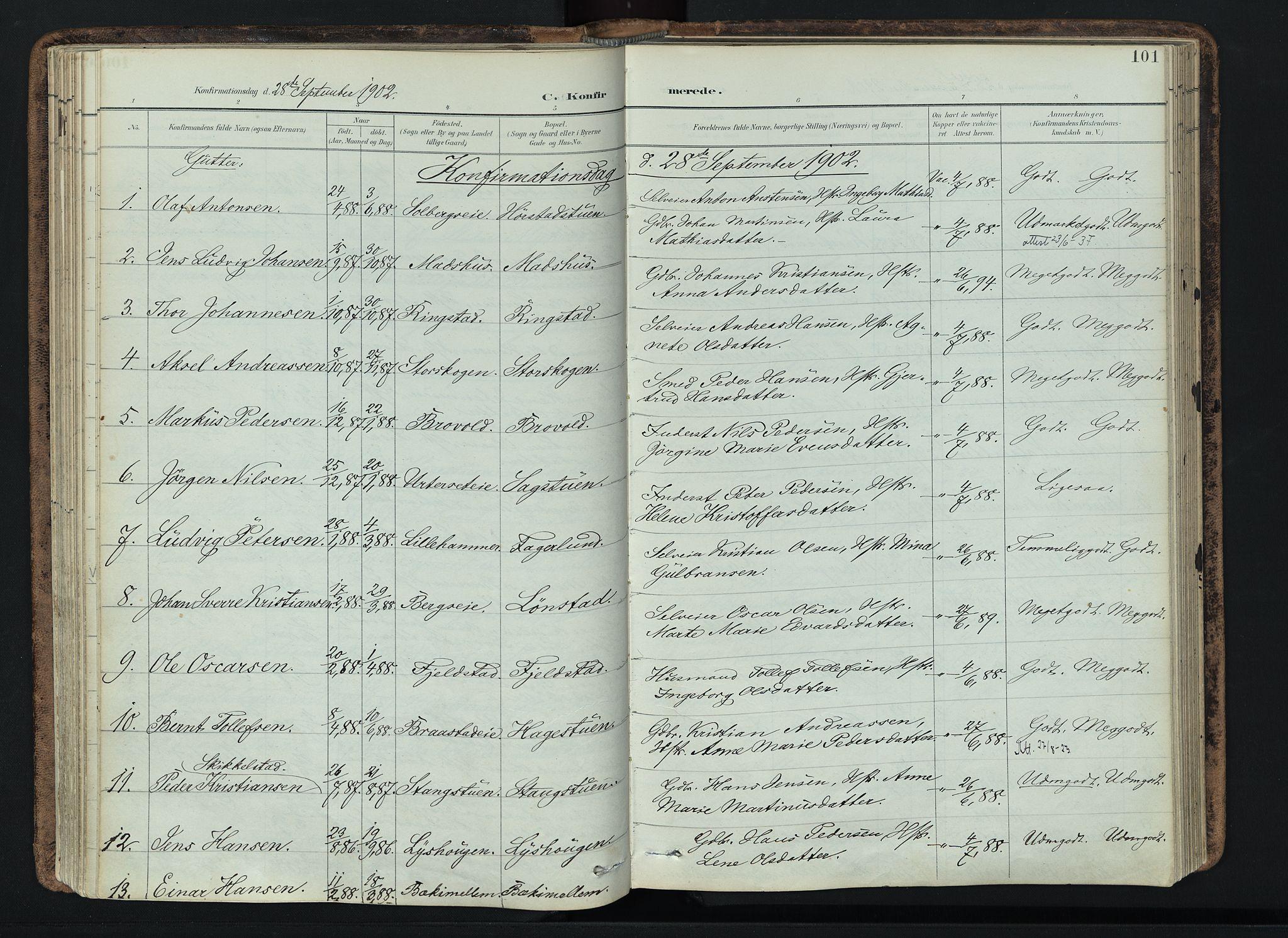 SAH, Vardal prestekontor, H/Ha/Haa/L0019: Ministerialbok nr. 19, 1893-1907, s. 101