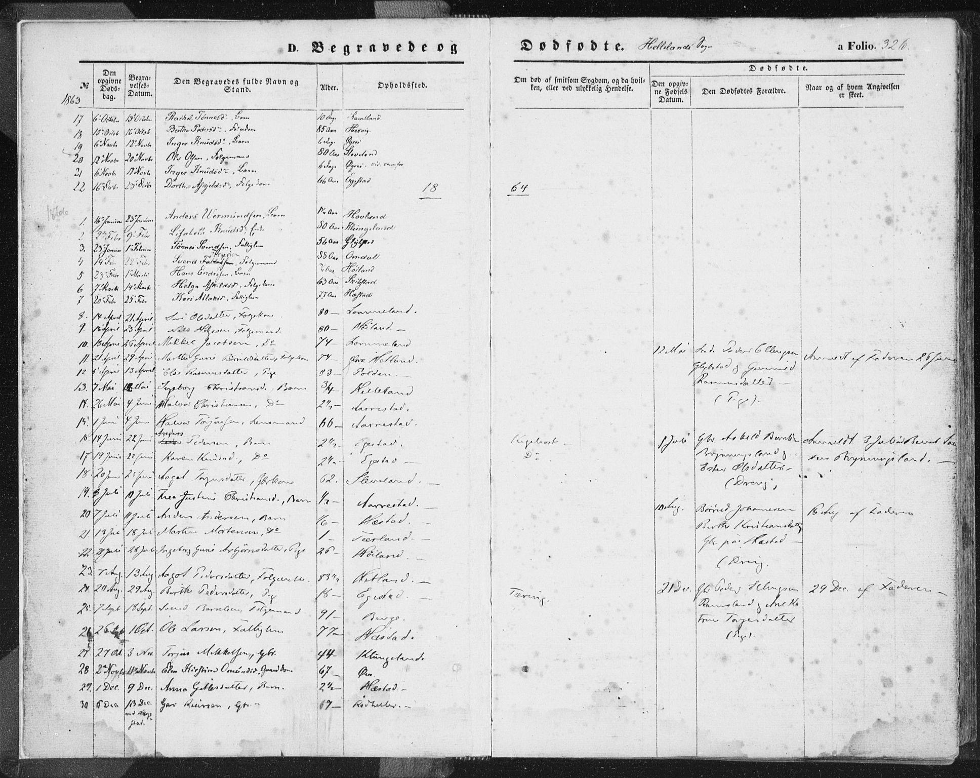 SAST, Helleland sokneprestkontor, Ministerialbok nr. A 7.2, 1863-1886, s. 326