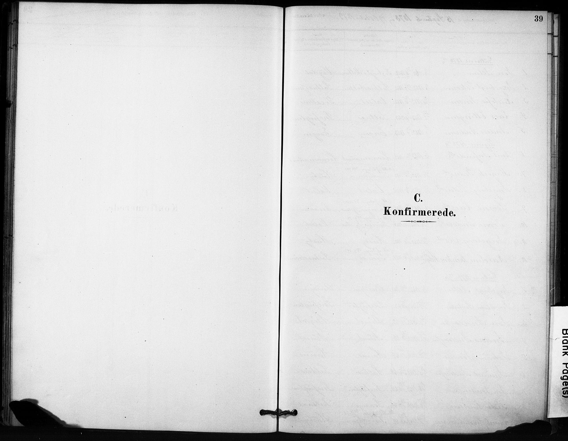 SAT, Ministerialprotokoller, klokkerbøker og fødselsregistre - Sør-Trøndelag, 666/L0786: Ministerialbok nr. 666A04, 1878-1895, s. 39