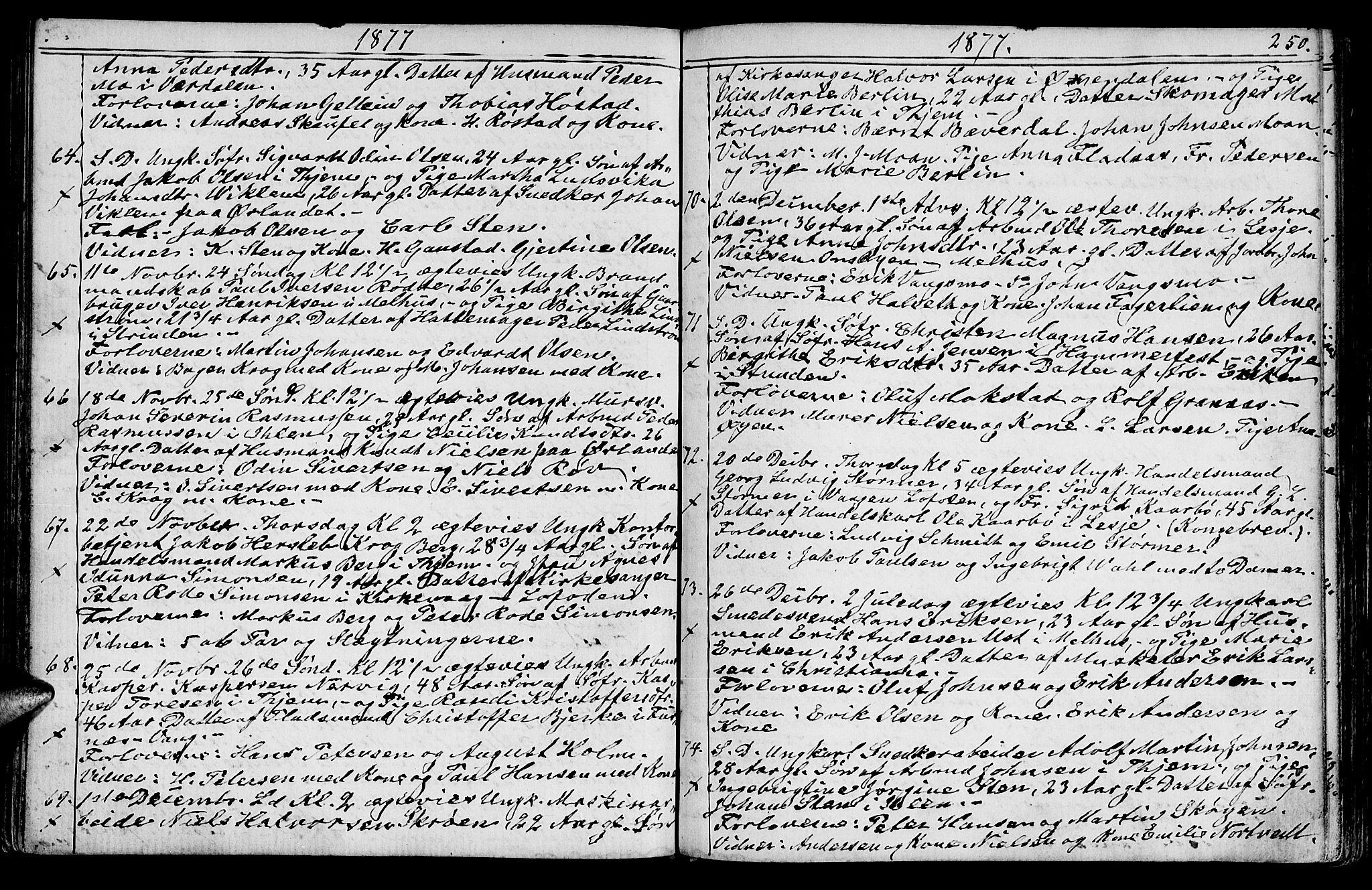 SAT, Ministerialprotokoller, klokkerbøker og fødselsregistre - Sør-Trøndelag, 602/L0142: Klokkerbok nr. 602C10, 1872-1894, s. 250