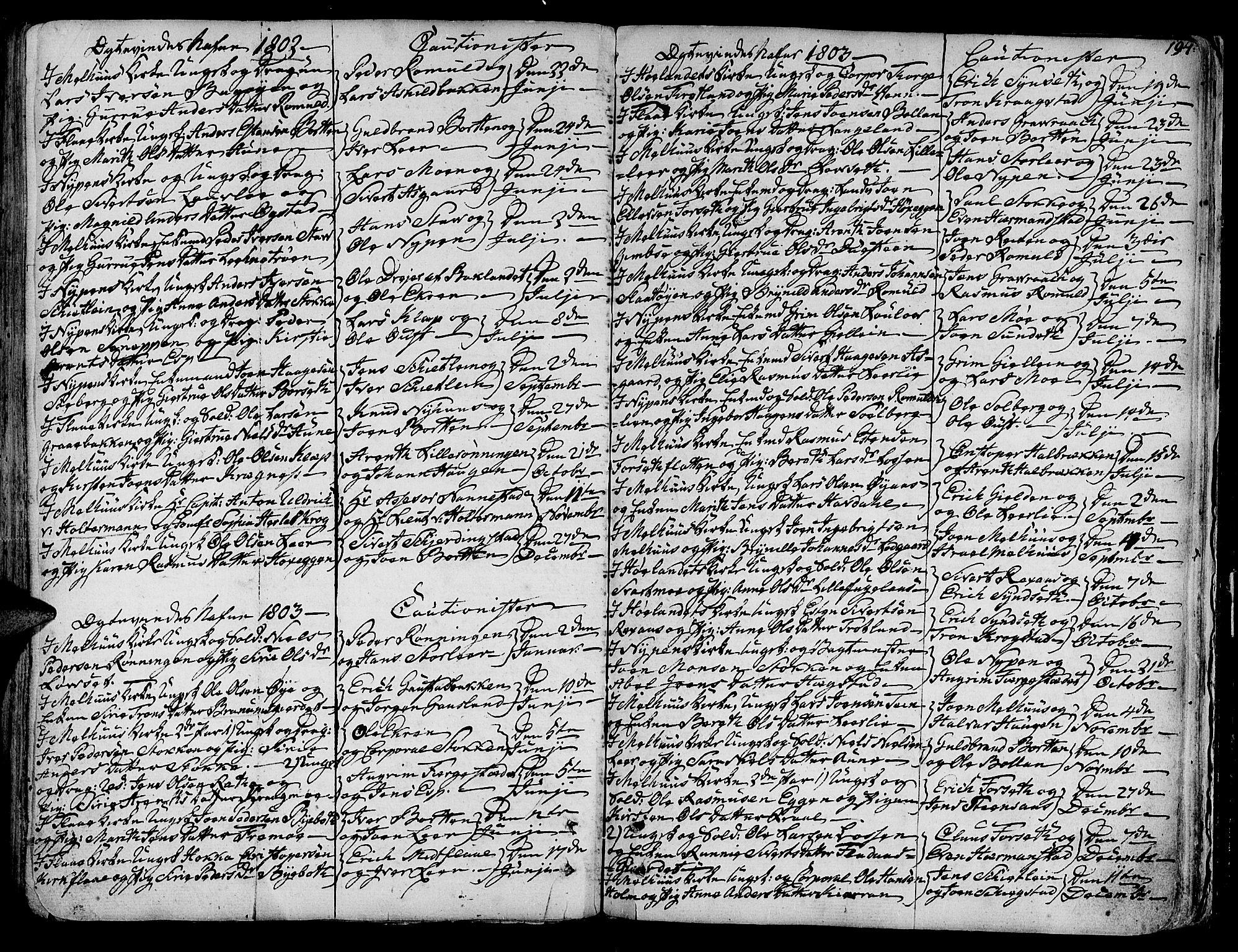 SAT, Ministerialprotokoller, klokkerbøker og fødselsregistre - Sør-Trøndelag, 691/L1061: Ministerialbok nr. 691A02 /1, 1768-1815, s. 194
