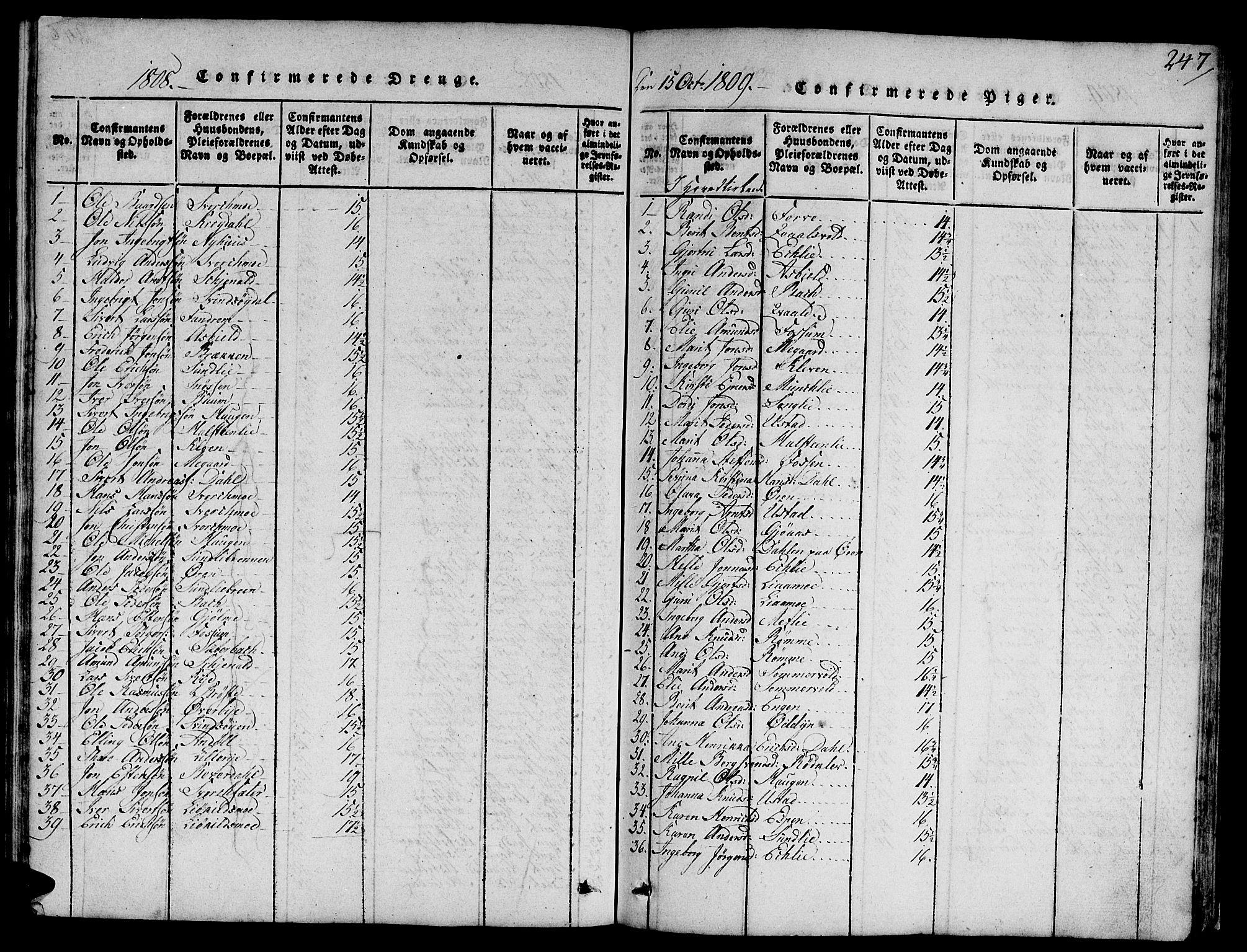 SAT, Ministerialprotokoller, klokkerbøker og fødselsregistre - Sør-Trøndelag, 668/L0803: Ministerialbok nr. 668A03, 1800-1826, s. 247