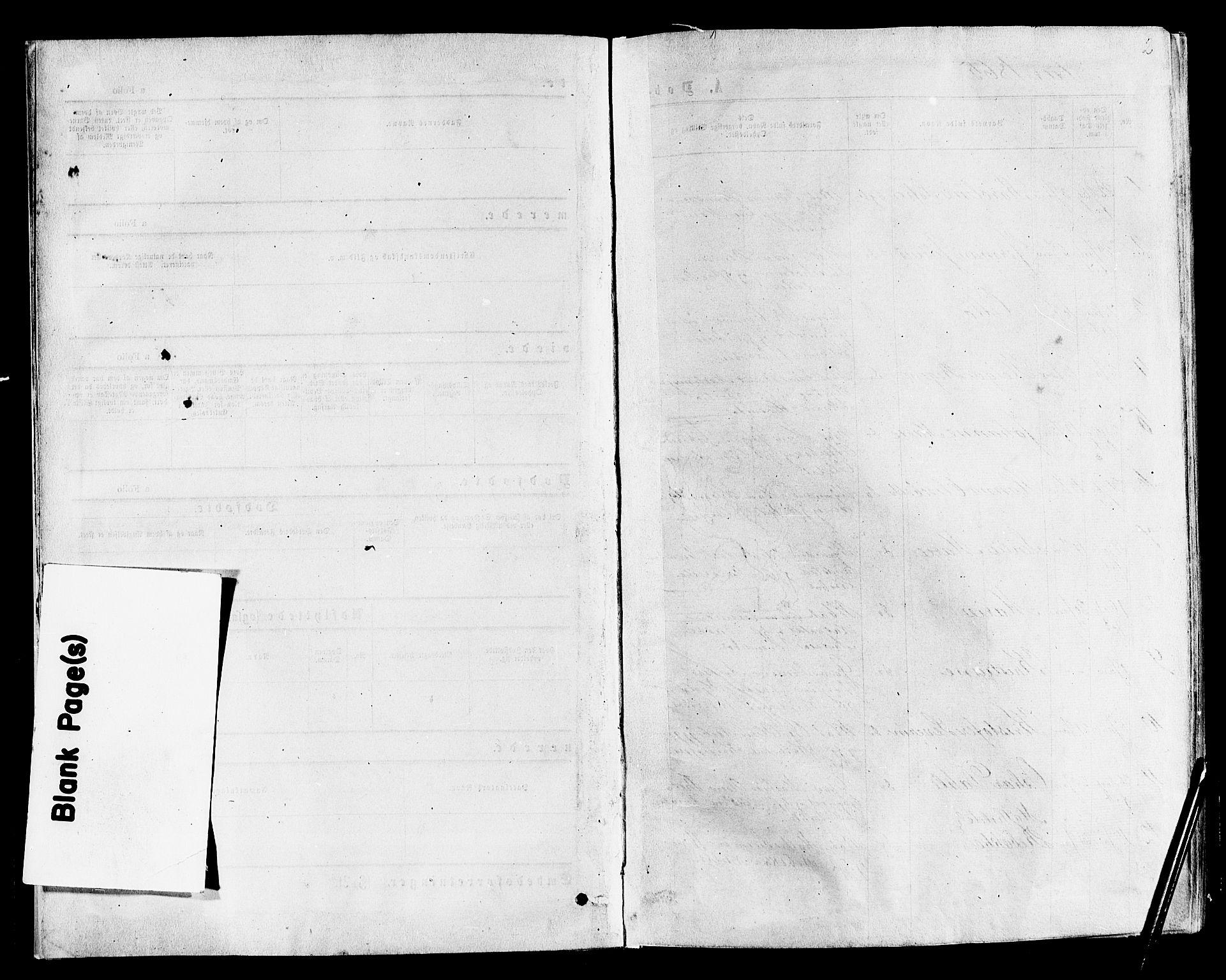 SAKO, Nøtterøy kirkebøker, F/Fa/L0007: Ministerialbok nr. I 7, 1865-1877, s. 2