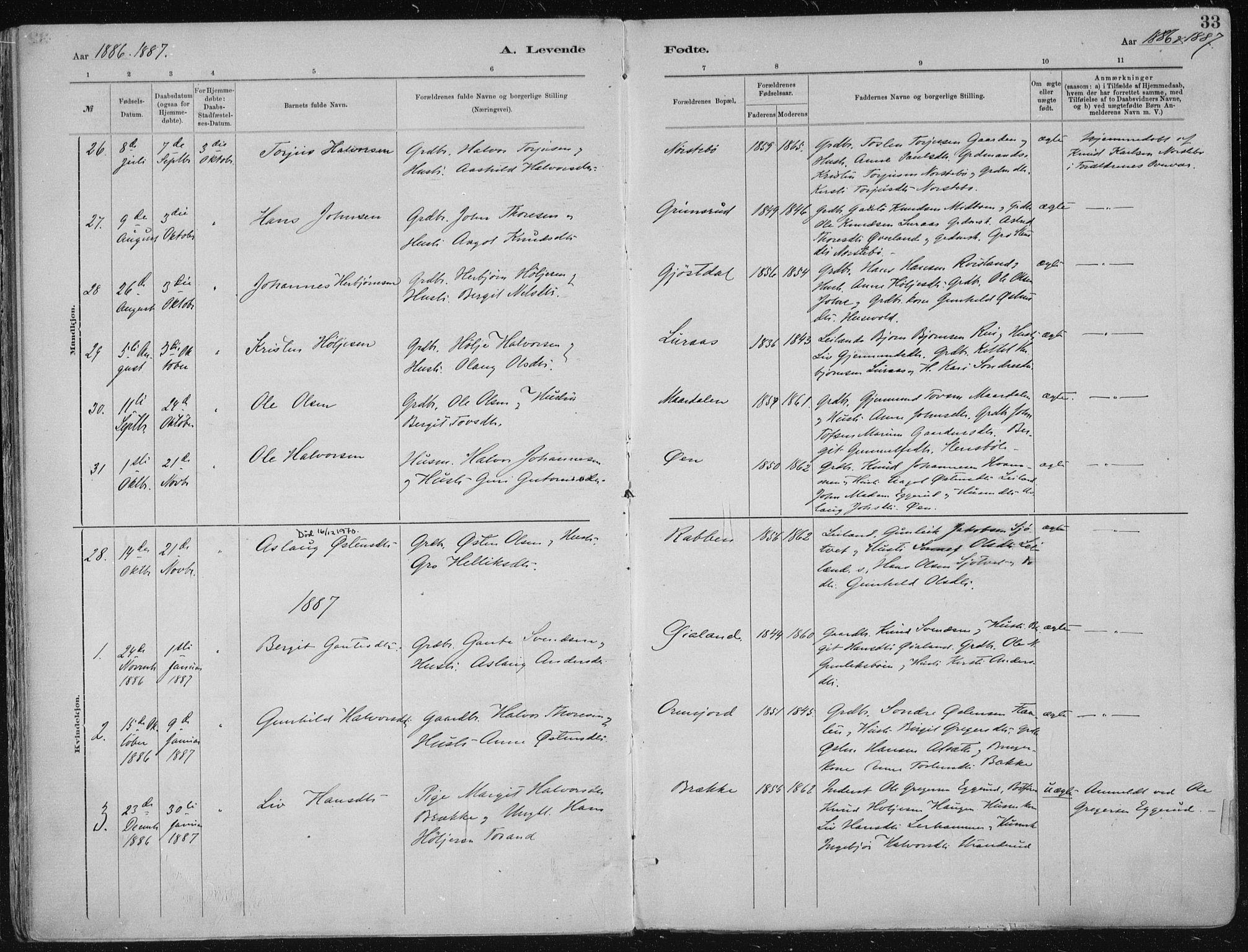 SAKO, Tinn kirkebøker, F/Fa/L0007: Ministerialbok nr. I 7, 1878-1922, s. 33