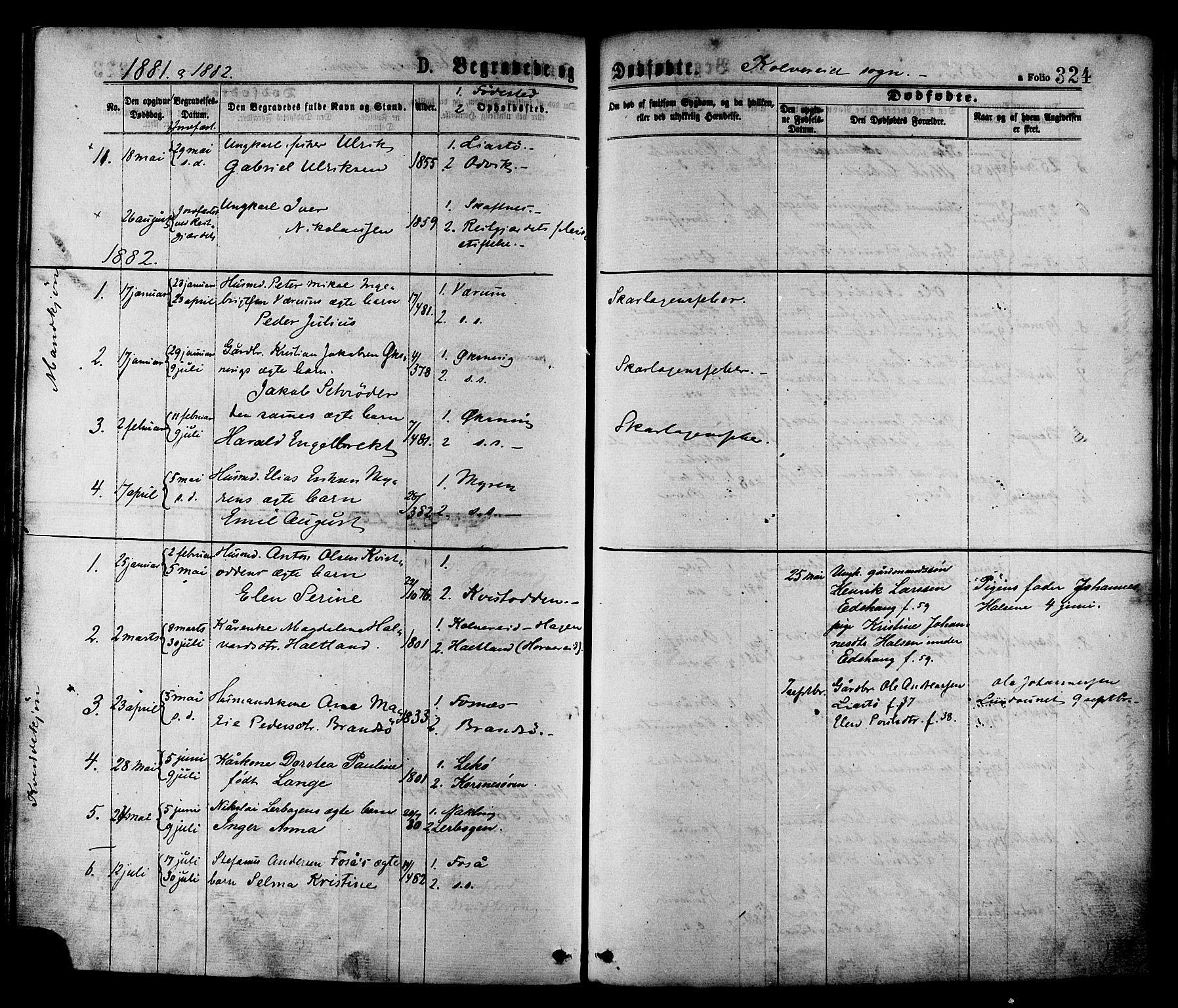 SAT, Ministerialprotokoller, klokkerbøker og fødselsregistre - Nord-Trøndelag, 780/L0642: Ministerialbok nr. 780A07 /1, 1874-1885, s. 324