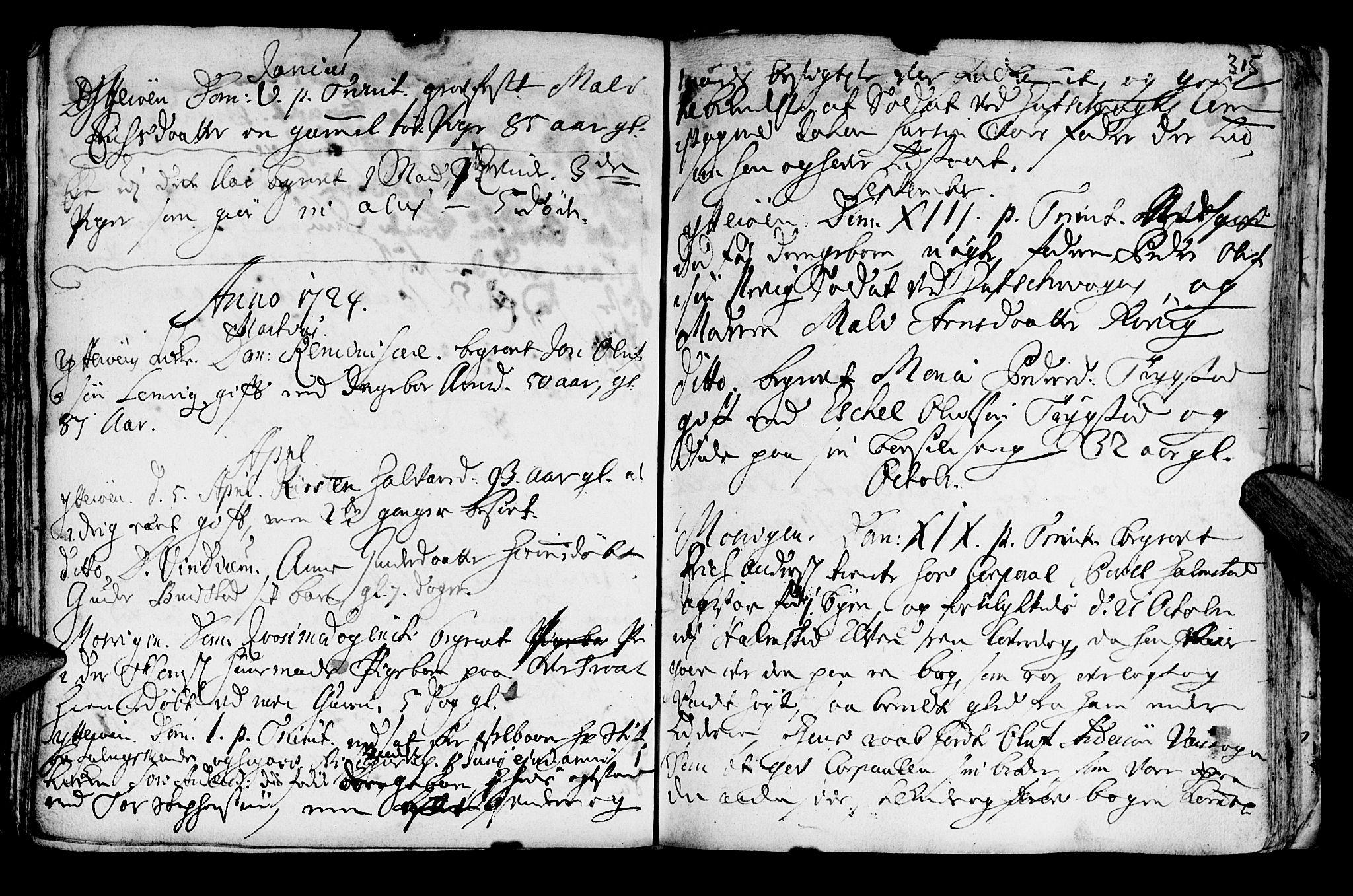 SAT, Ministerialprotokoller, klokkerbøker og fødselsregistre - Nord-Trøndelag, 722/L0215: Ministerialbok nr. 722A02, 1718-1755, s. 315