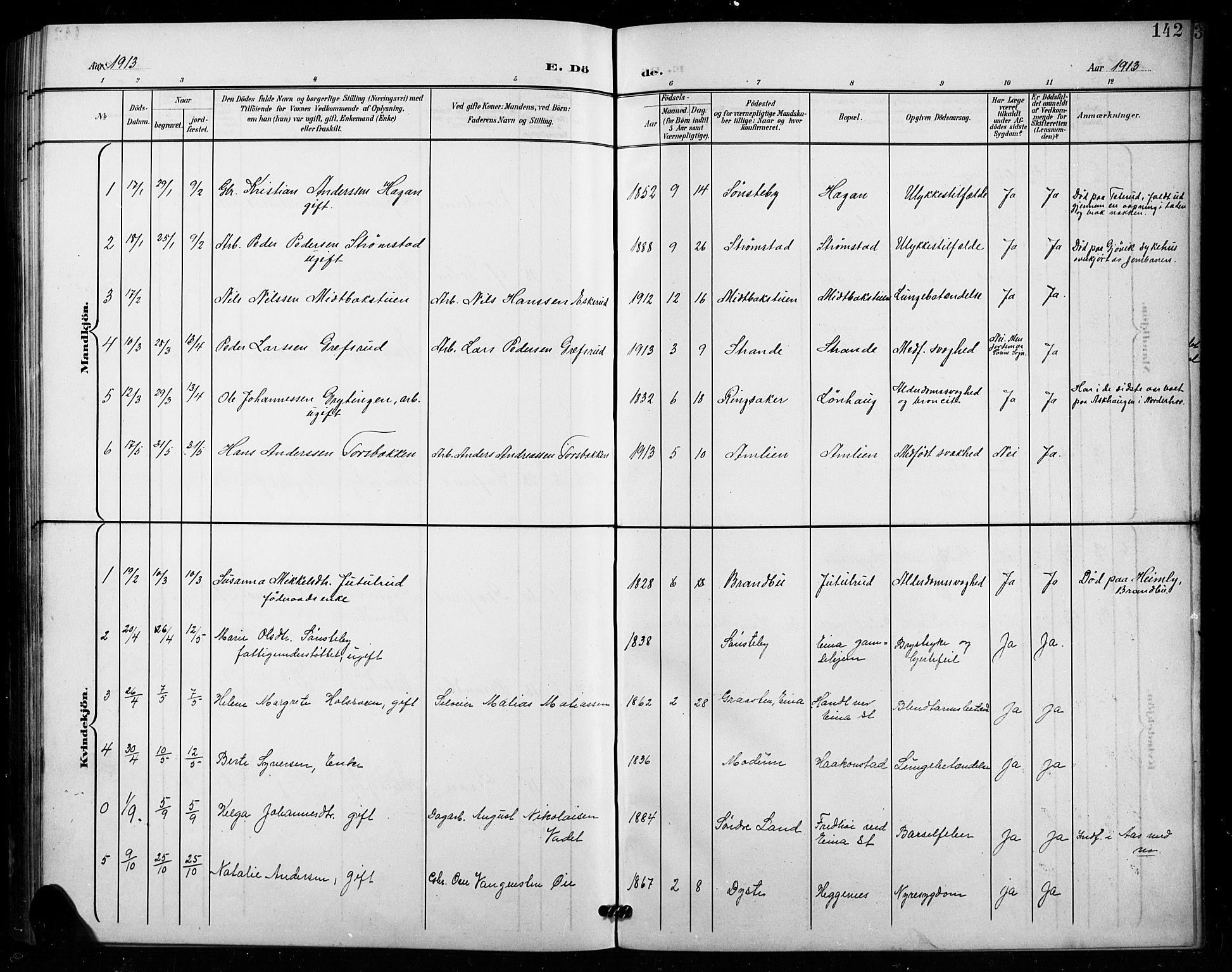 SAH, Vestre Toten prestekontor, H/Ha/Hab/L0016: Klokkerbok nr. 16, 1901-1915, s. 142