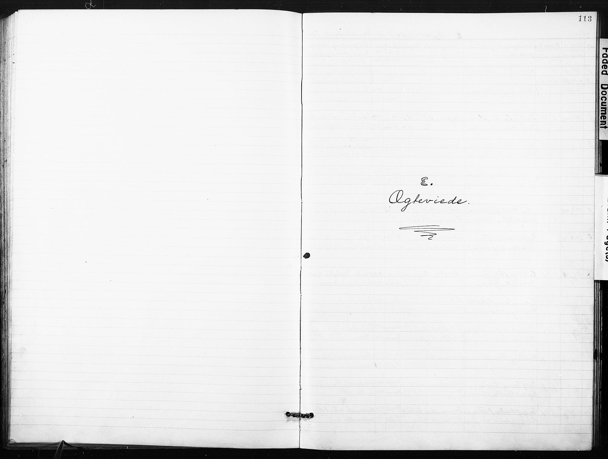 SAO, Kristi menighet Fredrikstad , A/L0002: Dissenterprotokoll nr. 2, 1904-1932, s. 113