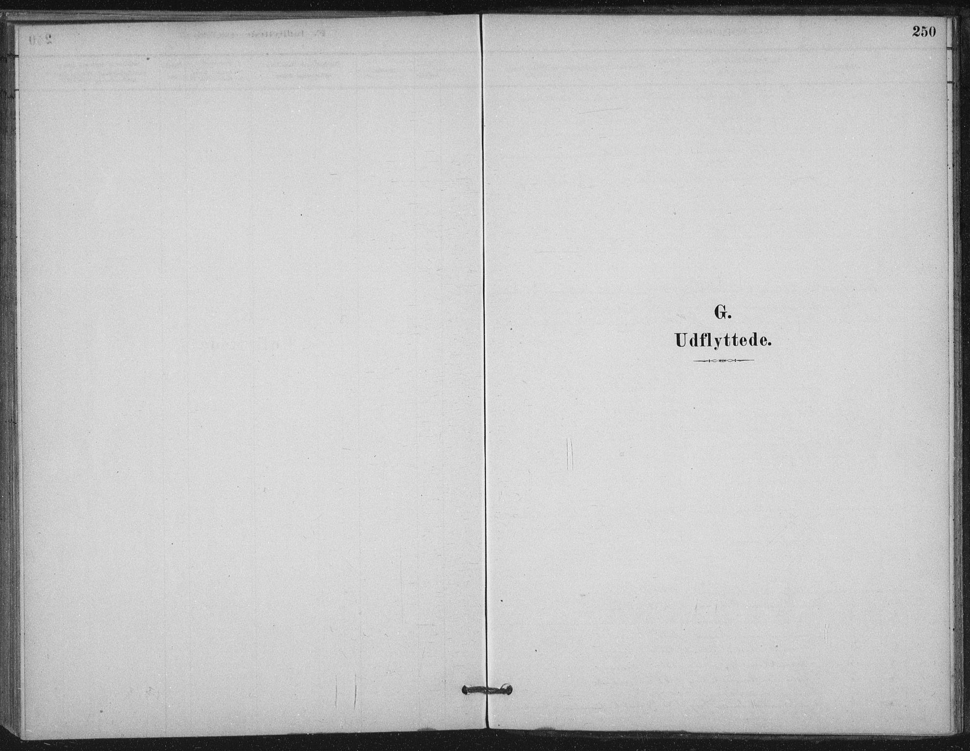 SAT, Ministerialprotokoller, klokkerbøker og fødselsregistre - Nord-Trøndelag, 710/L0095: Ministerialbok nr. 710A01, 1880-1914, s. 250