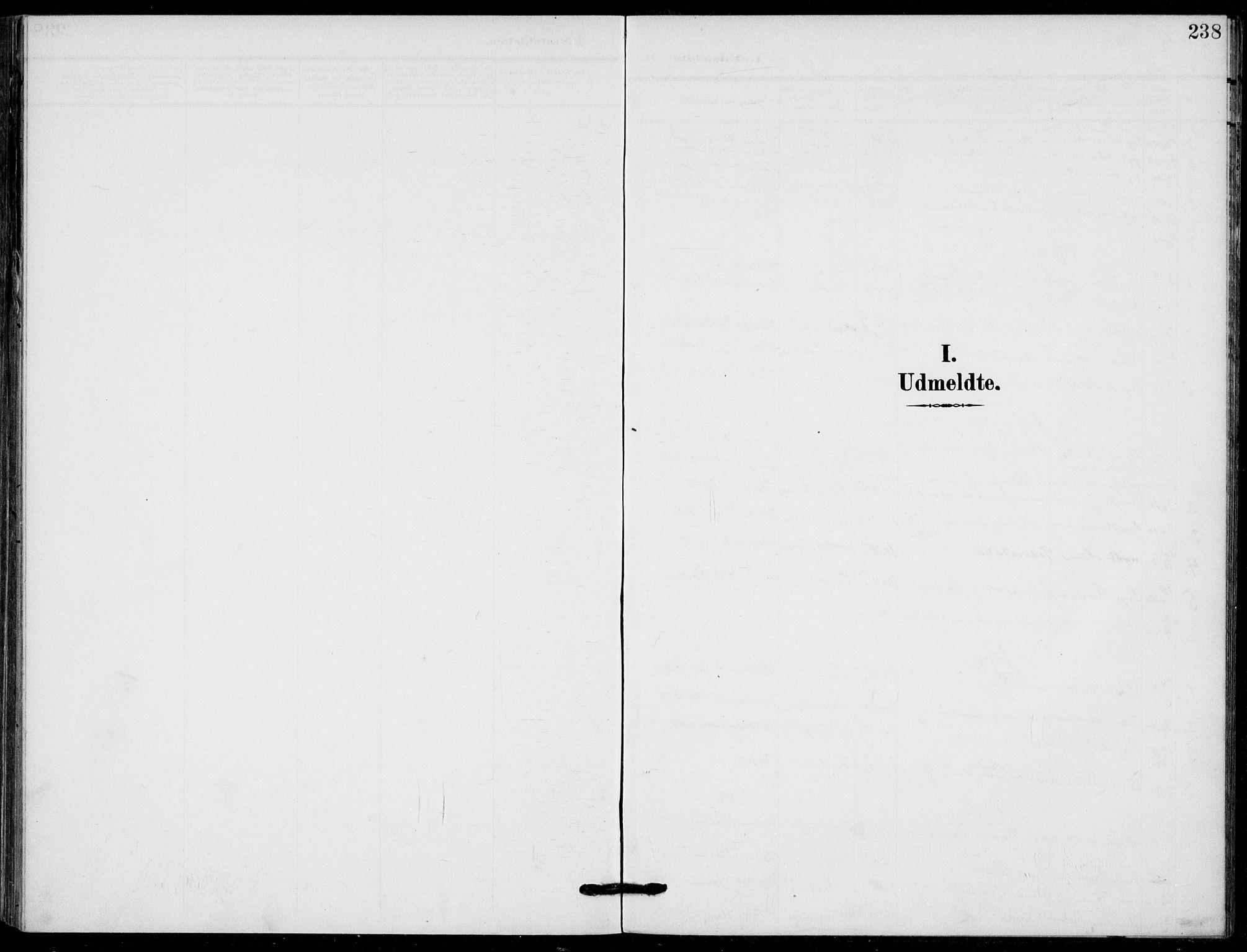 SAKO, Holla kirkebøker, F/Fa/L0012: Ministerialbok nr. 12, 1907-1923, s. 238