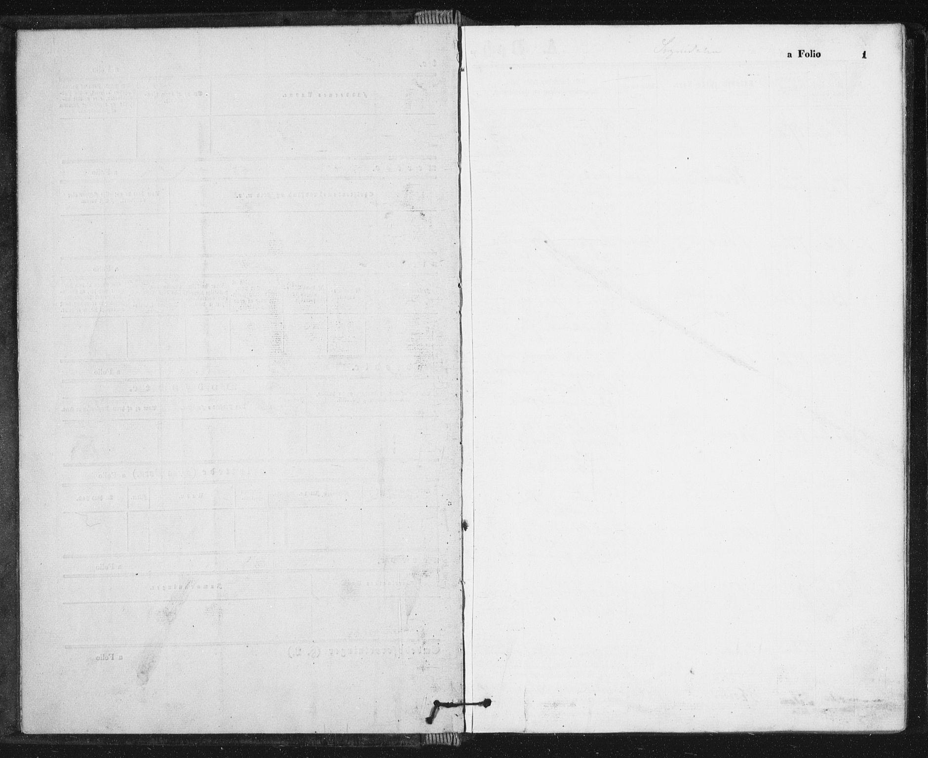 SAT, Ministerialprotokoller, klokkerbøker og fødselsregistre - Sør-Trøndelag, 689/L1039: Ministerialbok nr. 689A04, 1865-1878, s. 1