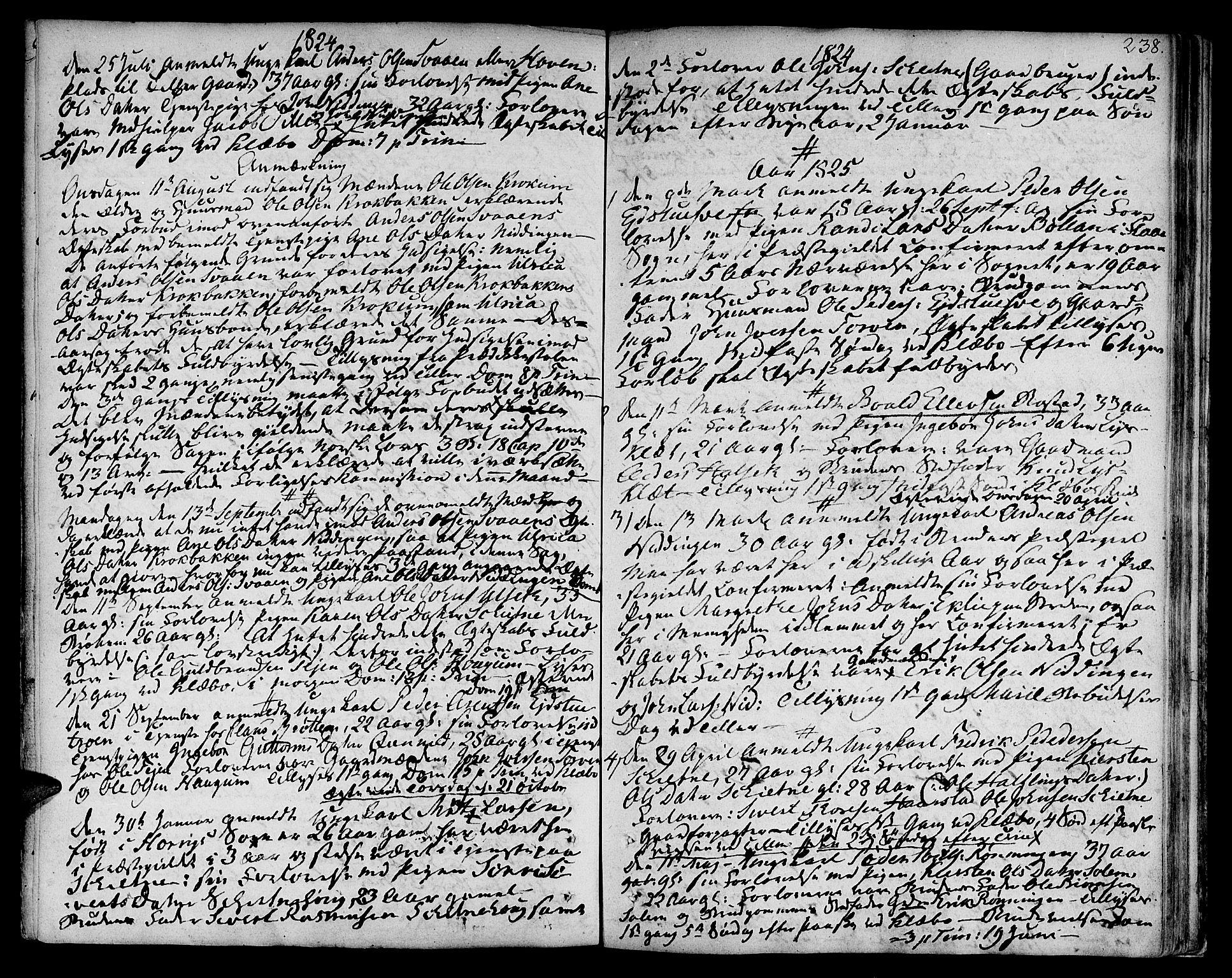 SAT, Ministerialprotokoller, klokkerbøker og fødselsregistre - Sør-Trøndelag, 618/L0438: Ministerialbok nr. 618A03, 1783-1815, s. 238