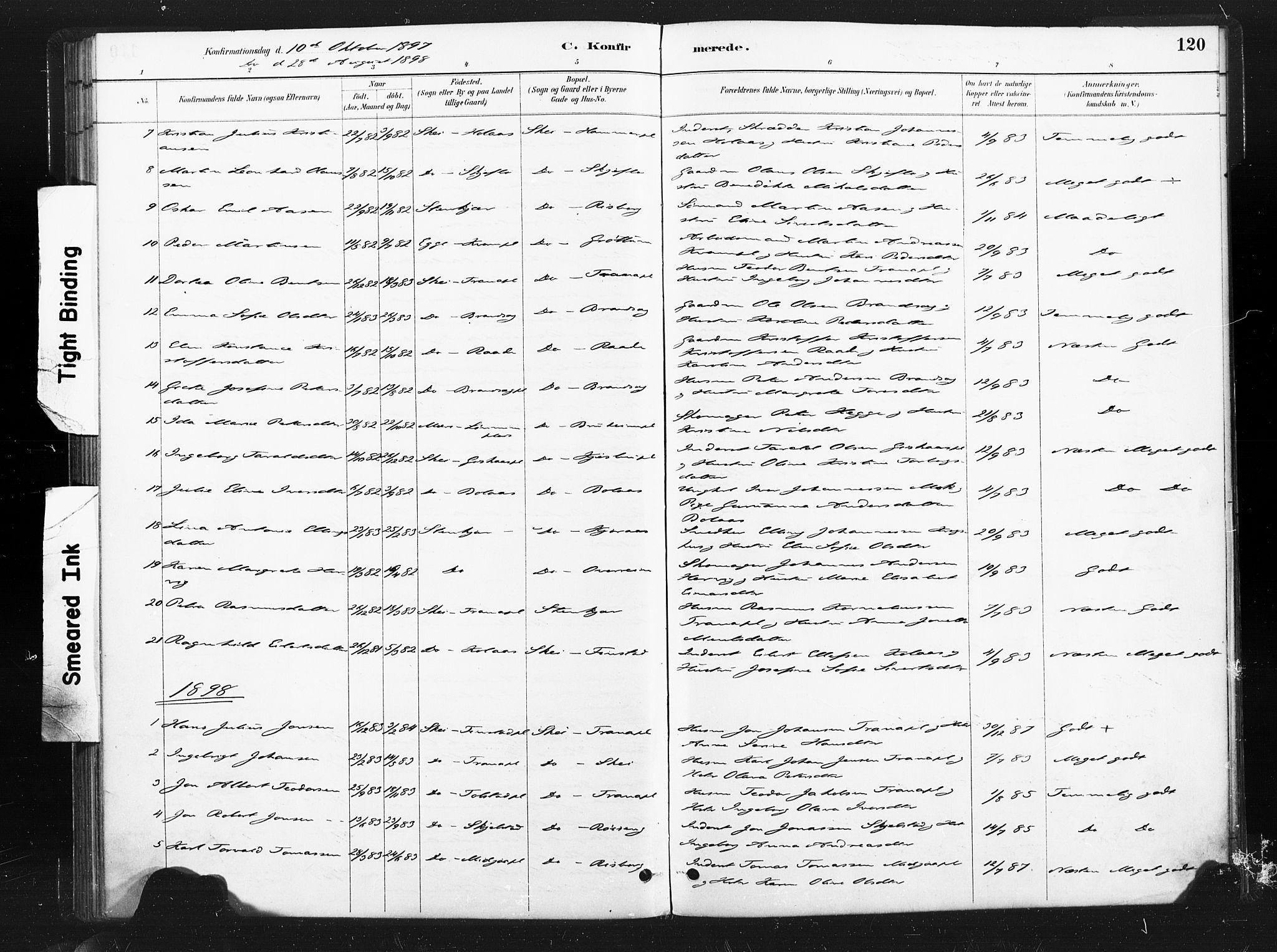 SAT, Ministerialprotokoller, klokkerbøker og fødselsregistre - Nord-Trøndelag, 736/L0361: Ministerialbok nr. 736A01, 1884-1906, s. 120
