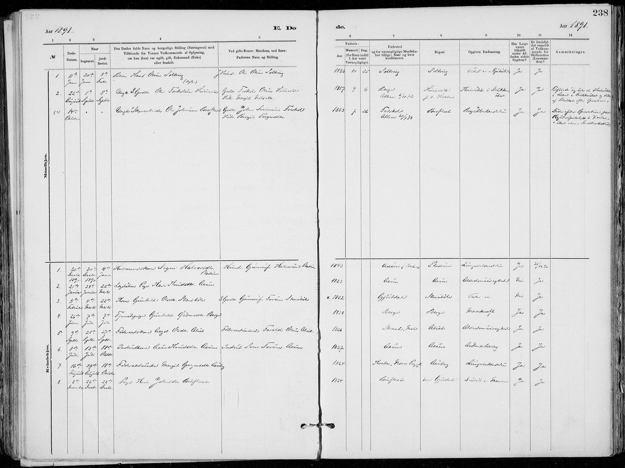 SAKO, Tinn kirkebøker, F/Fa/L0007: Ministerialbok nr. I 7, 1878-1922, s. 238