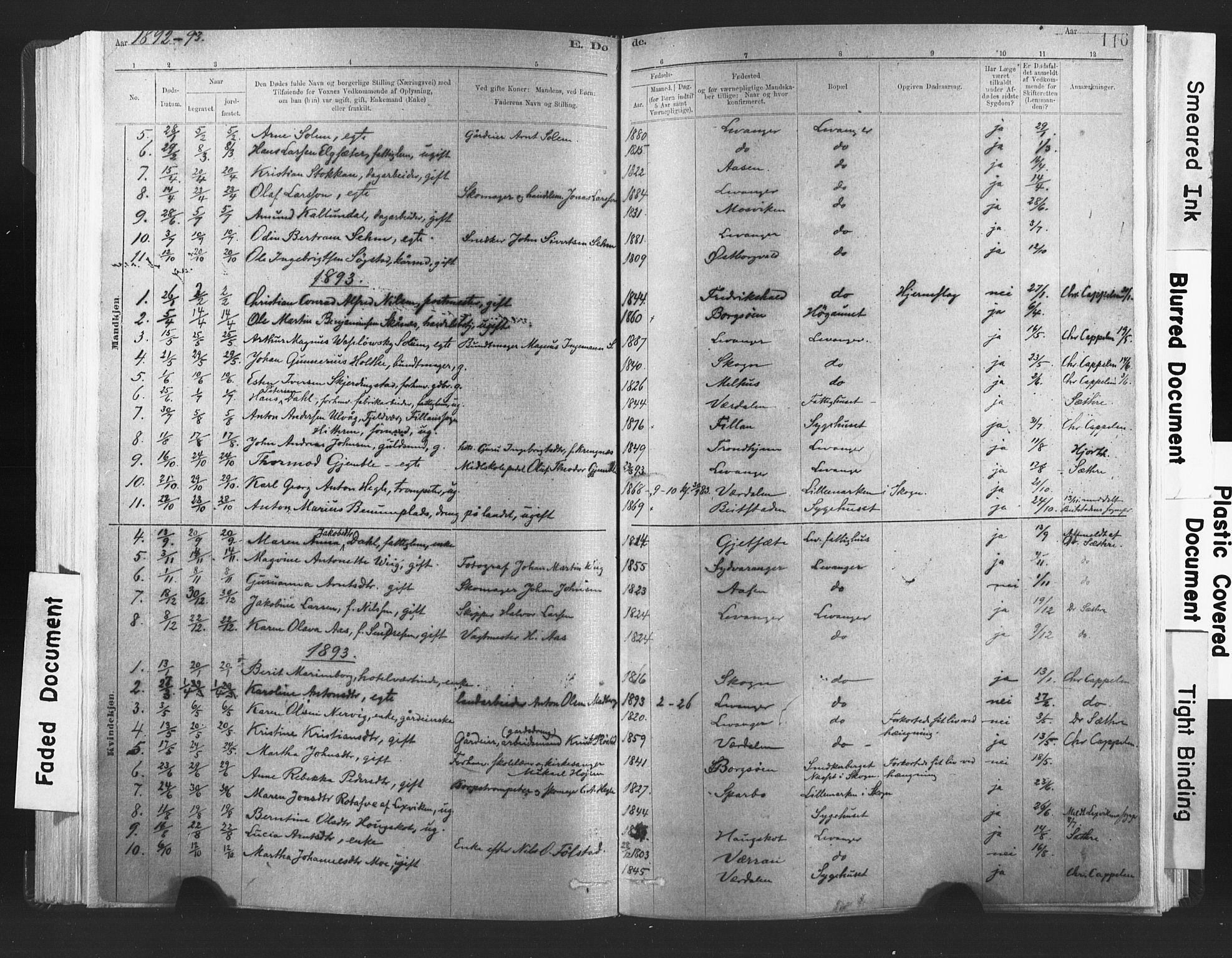 SAT, Ministerialprotokoller, klokkerbøker og fødselsregistre - Nord-Trøndelag, 720/L0189: Ministerialbok nr. 720A05, 1880-1911, s. 116