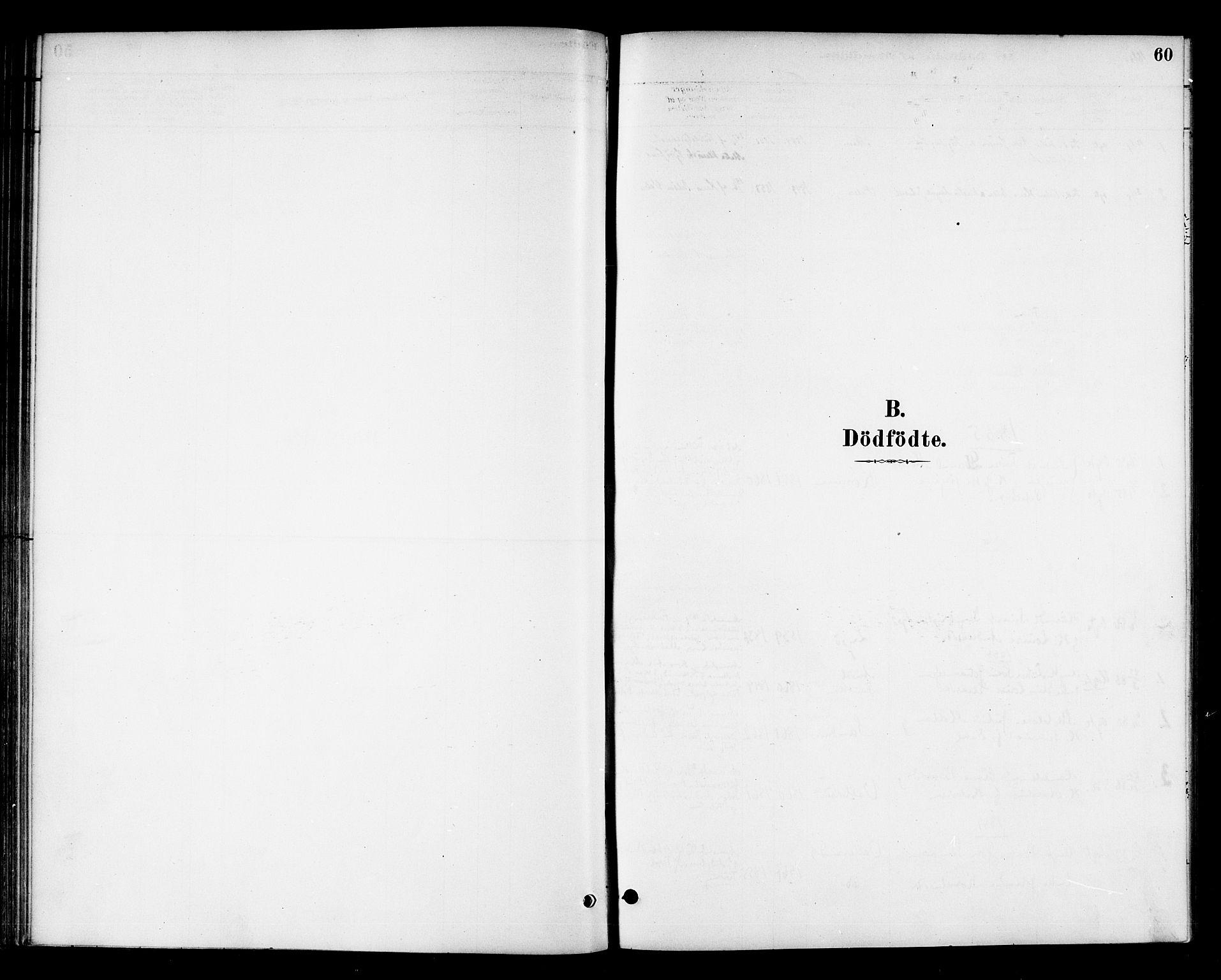 SAT, Ministerialprotokoller, klokkerbøker og fødselsregistre - Sør-Trøndelag, 654/L0663: Ministerialbok nr. 654A01, 1880-1894, s. 60