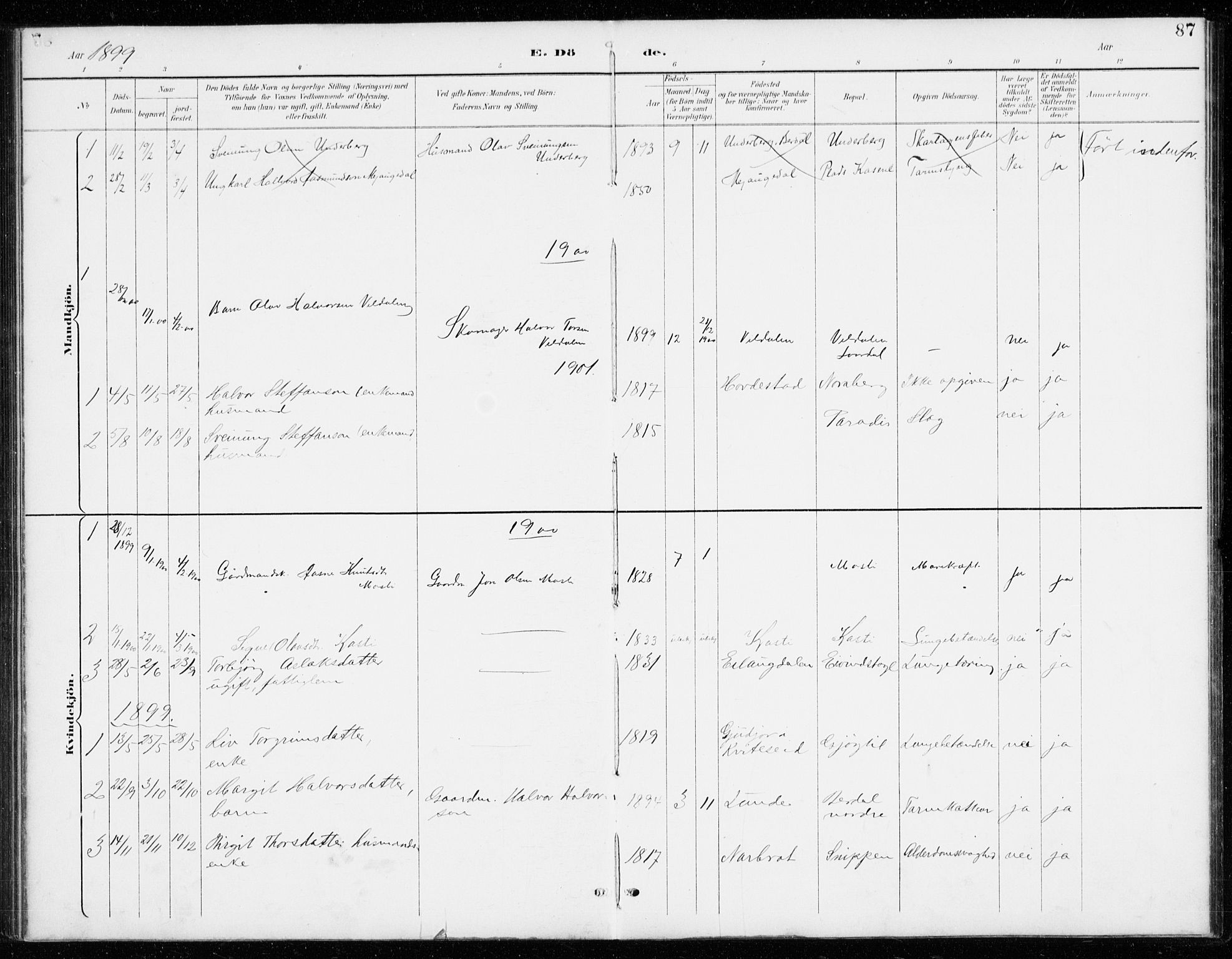 SAKO, Vinje kirkebøker, G/Gb/L0003: Klokkerbok nr. II 3, 1892-1943, s. 87